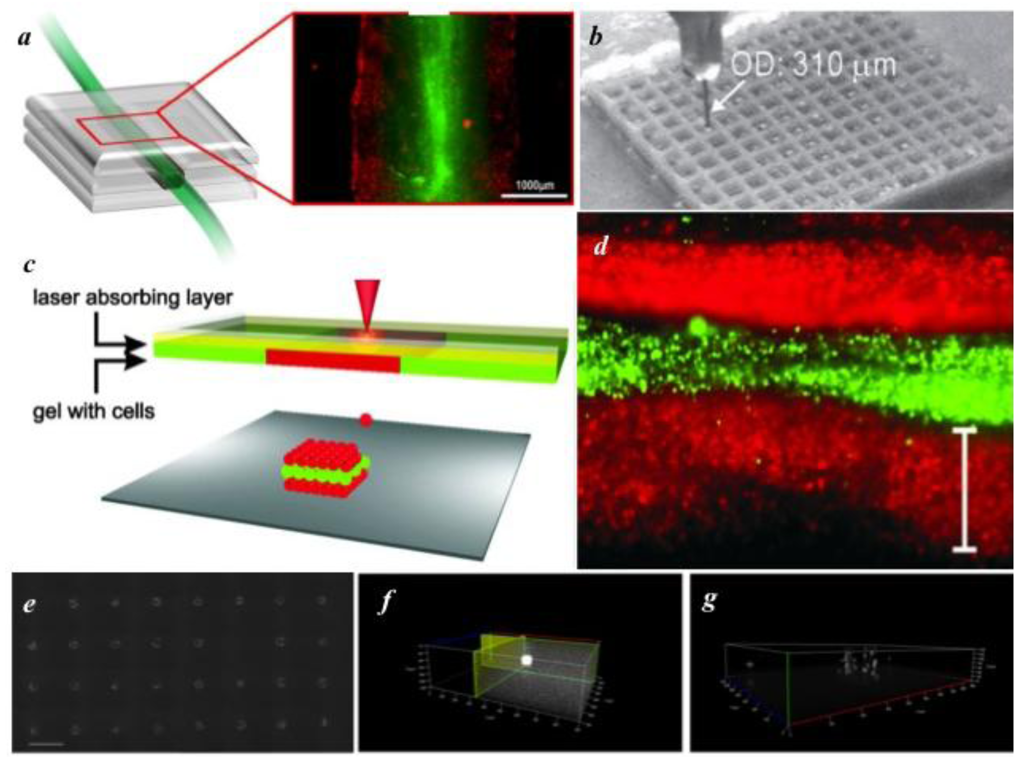 biosensors free full text recent advances in bioprinting and