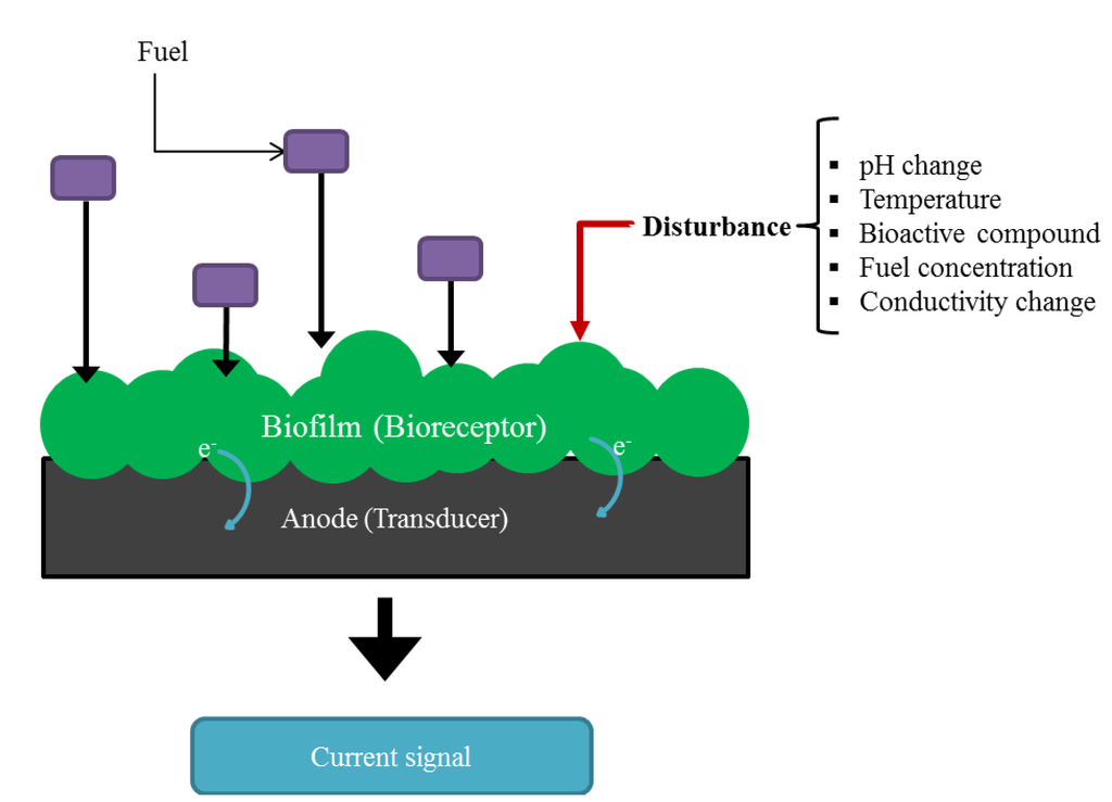 Fuel Cell Reactions >> Biosensors | Free Full-Text | Water Quality Monitoring in Developing Countries; Can Microbial ...