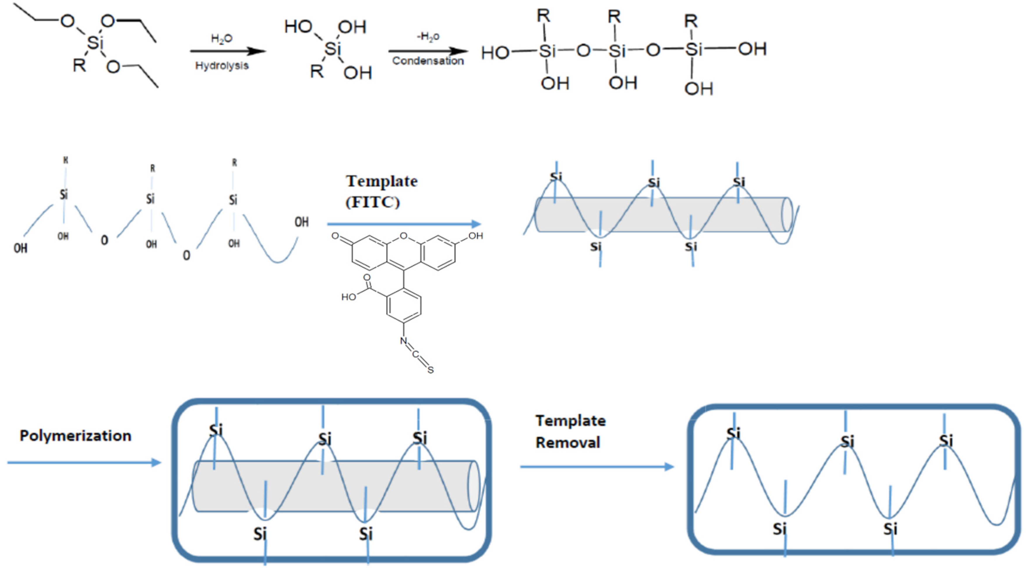 biosensors free full text integrating nanostructured artificial