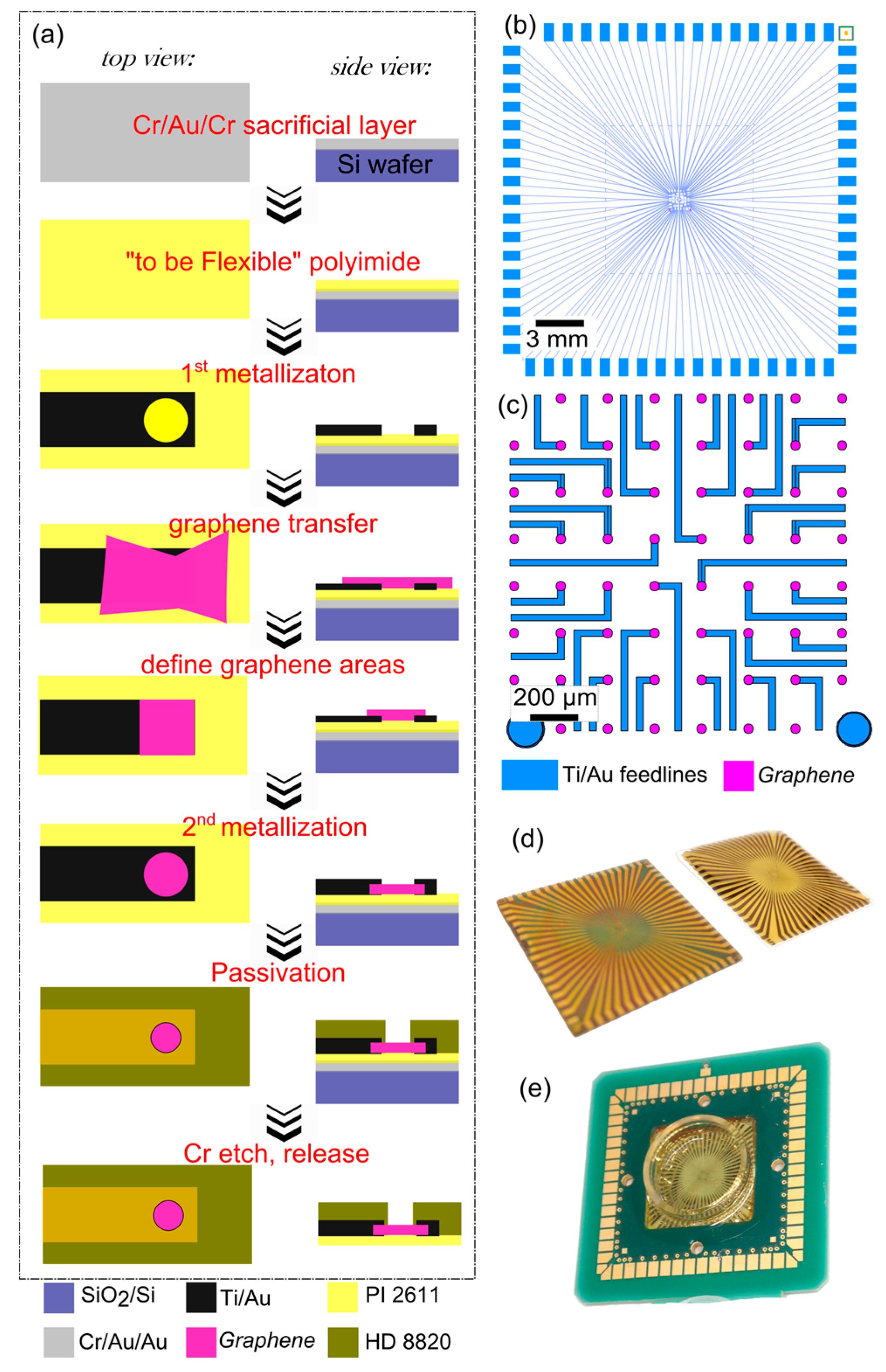 Biosensors Free Full Text Versatile Flexible Graphene