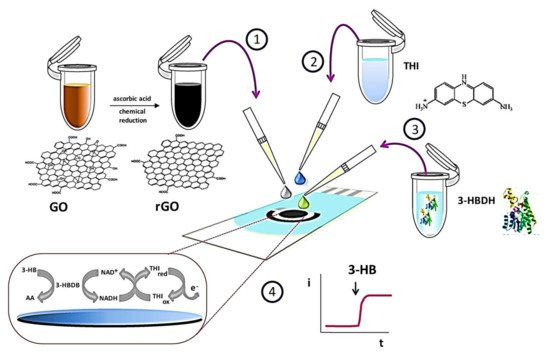 Biosensors   Special Issue : Electrochemical (Bio)sensors for