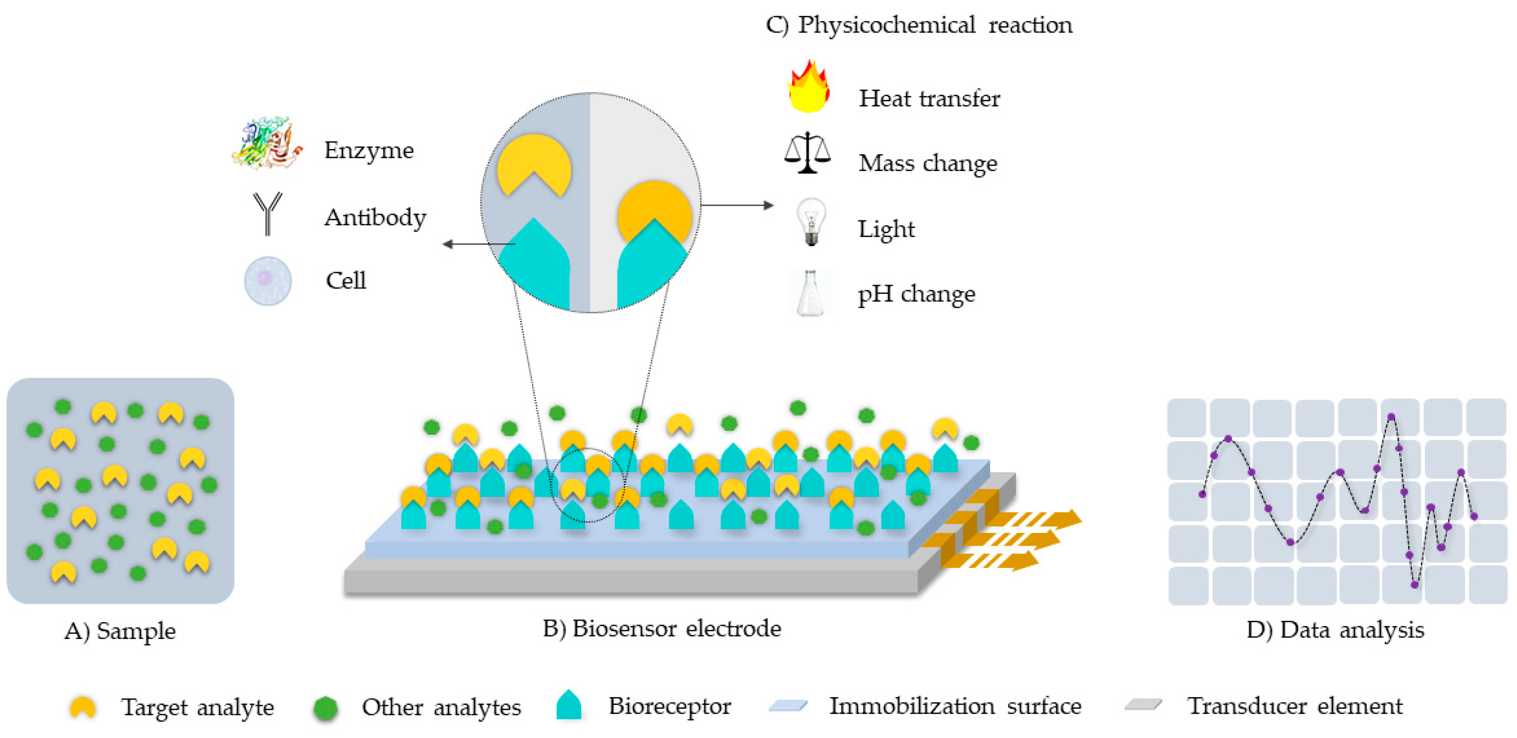 Biosensors | Free Full-Text | Enzyme-Based Electrochemical Biosensors for  Microfluidic Platforms to Detect Pharmaceutical Residues in Wastewater |  HTML