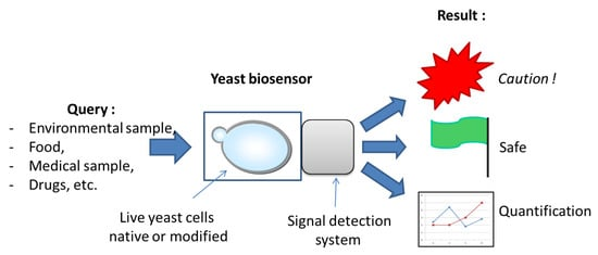 Biosensors 10 00051 g001 550