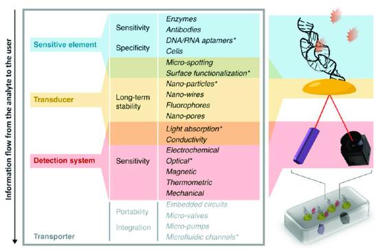 Biosensors 10 00133 g001 550