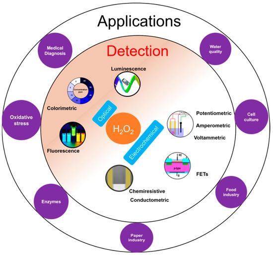 Biosensors 11 00009 g001 550