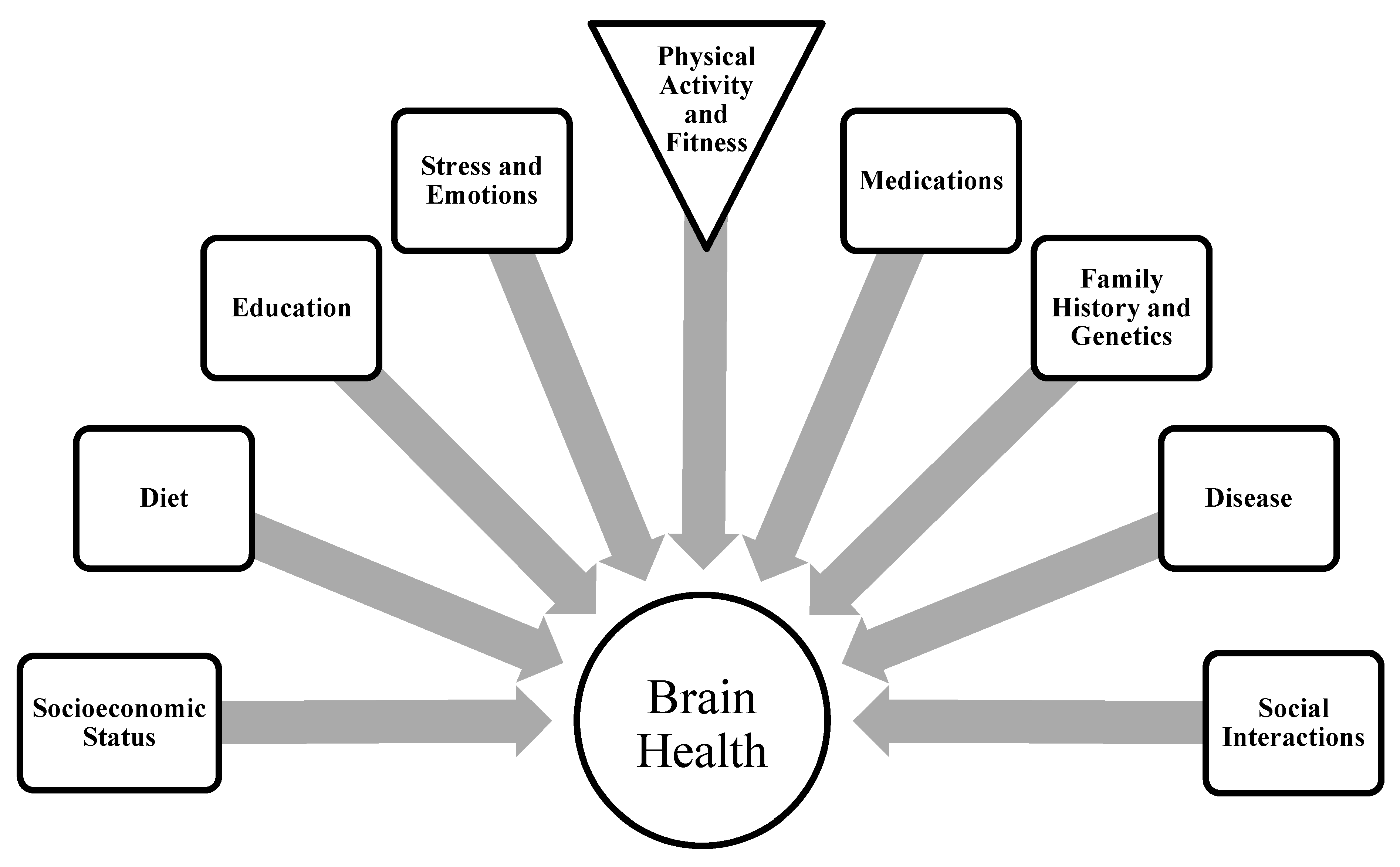 the brain and cognitive function How your brain works we'll examine the structures of the brain and how each section controls our daily functions, including motor control, visual processing.