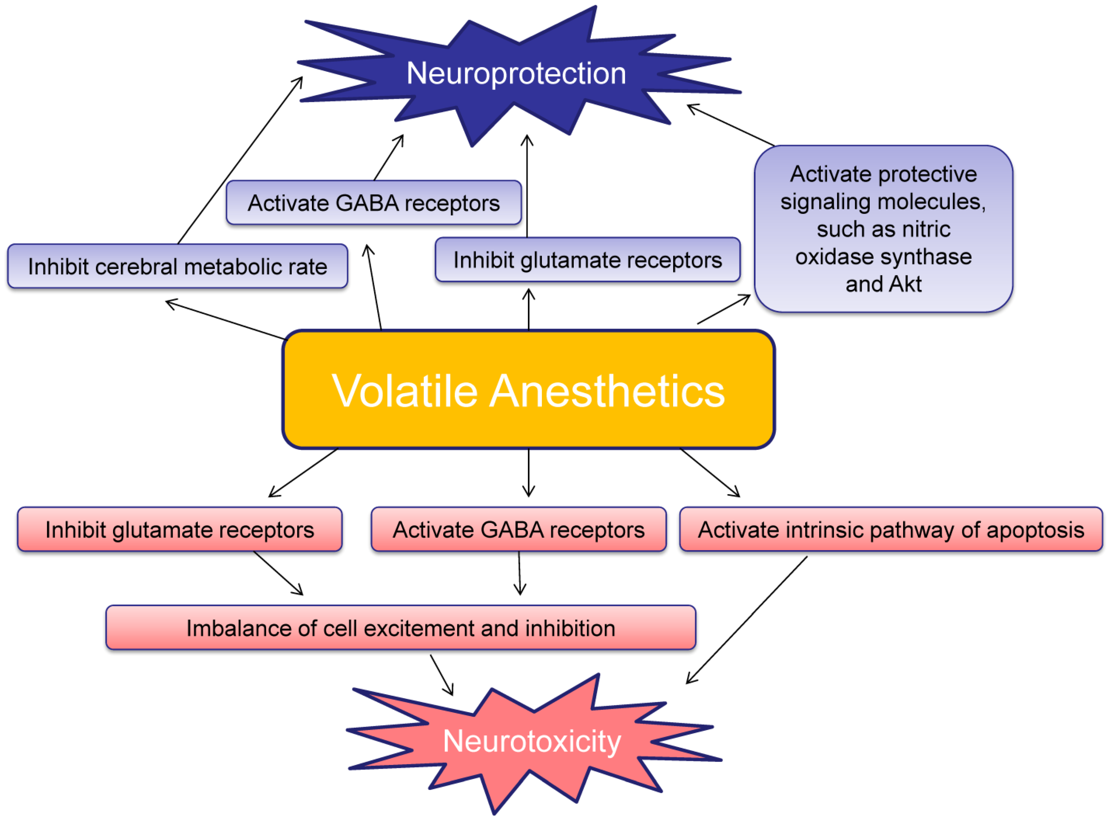 mechanism of action of general anaesthetics pdf
