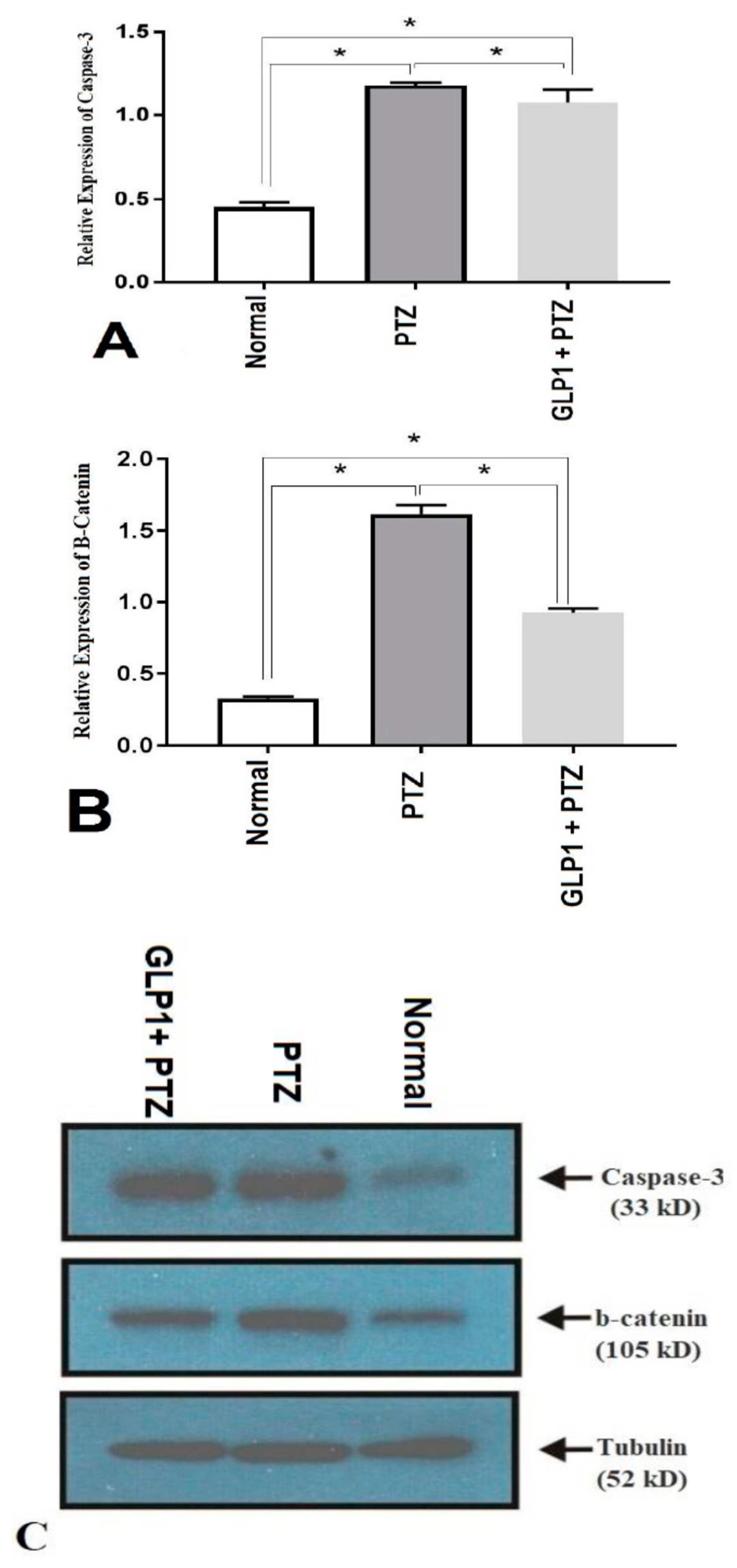 Brain Sciences   Free Full-Text   Effects of GLP-1 Receptor