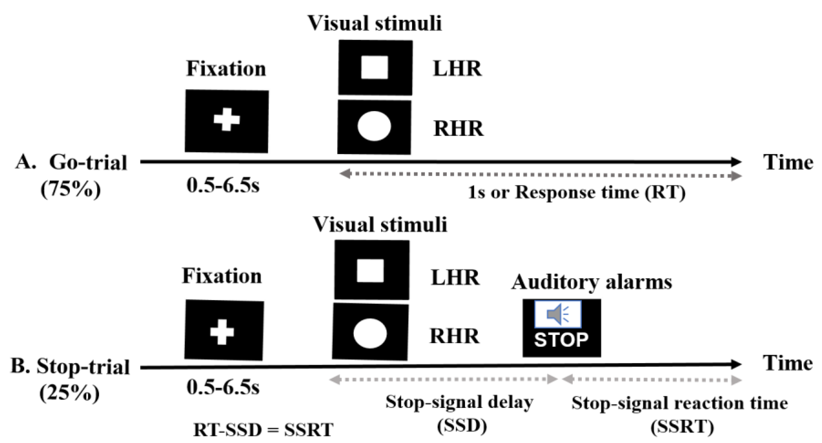 Brain Sciences | Free Full-Text | Modulation of the Visual