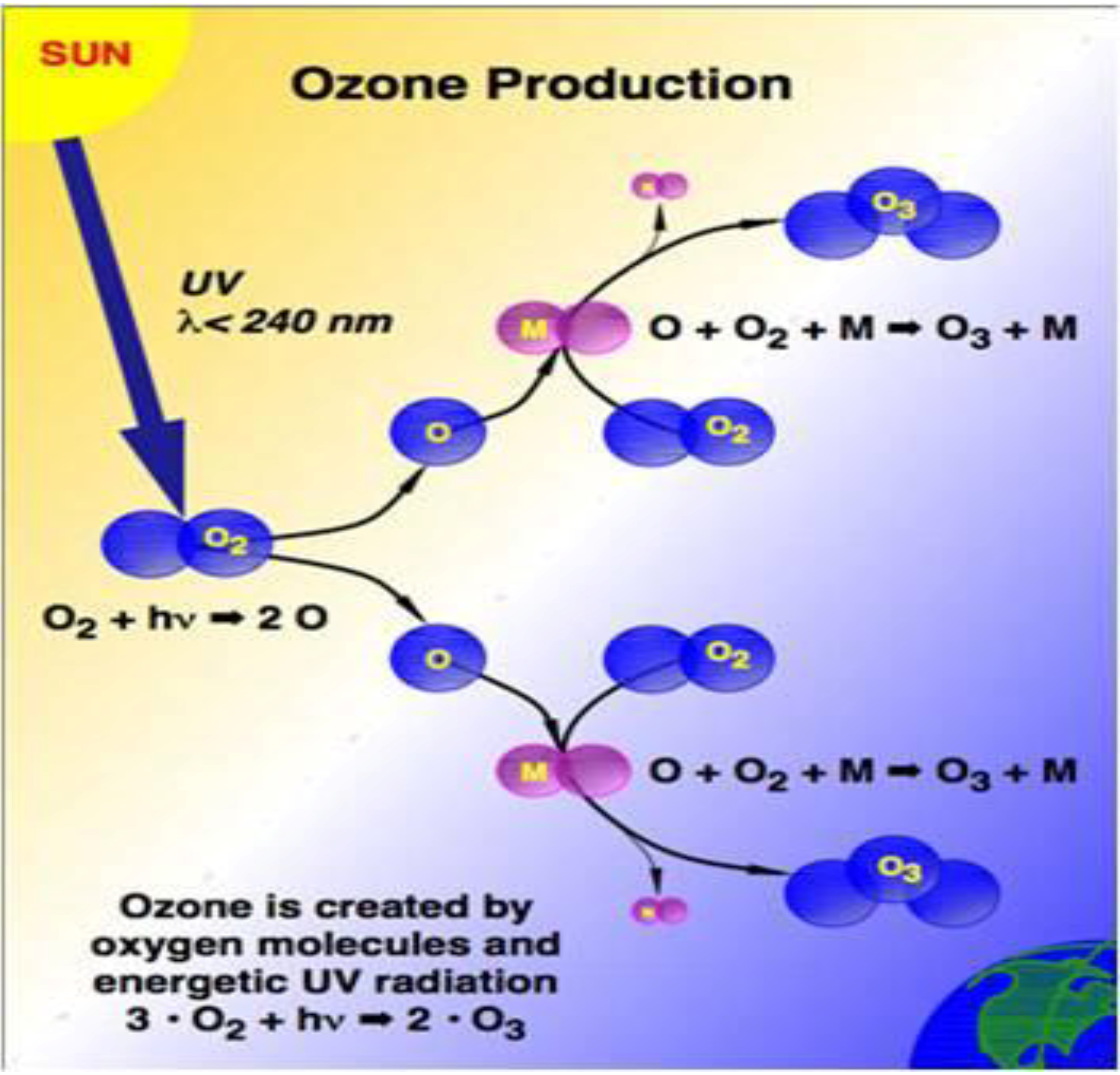 thesis statement ozone layer depletion Thesis ozone layer depletion carrier proteins transport molecules much more slowly than channels, as a number of conformational changes in the carrier are required for the transport of the solute across the membrane i started working at this corporation many years ago at arelatively junior.
