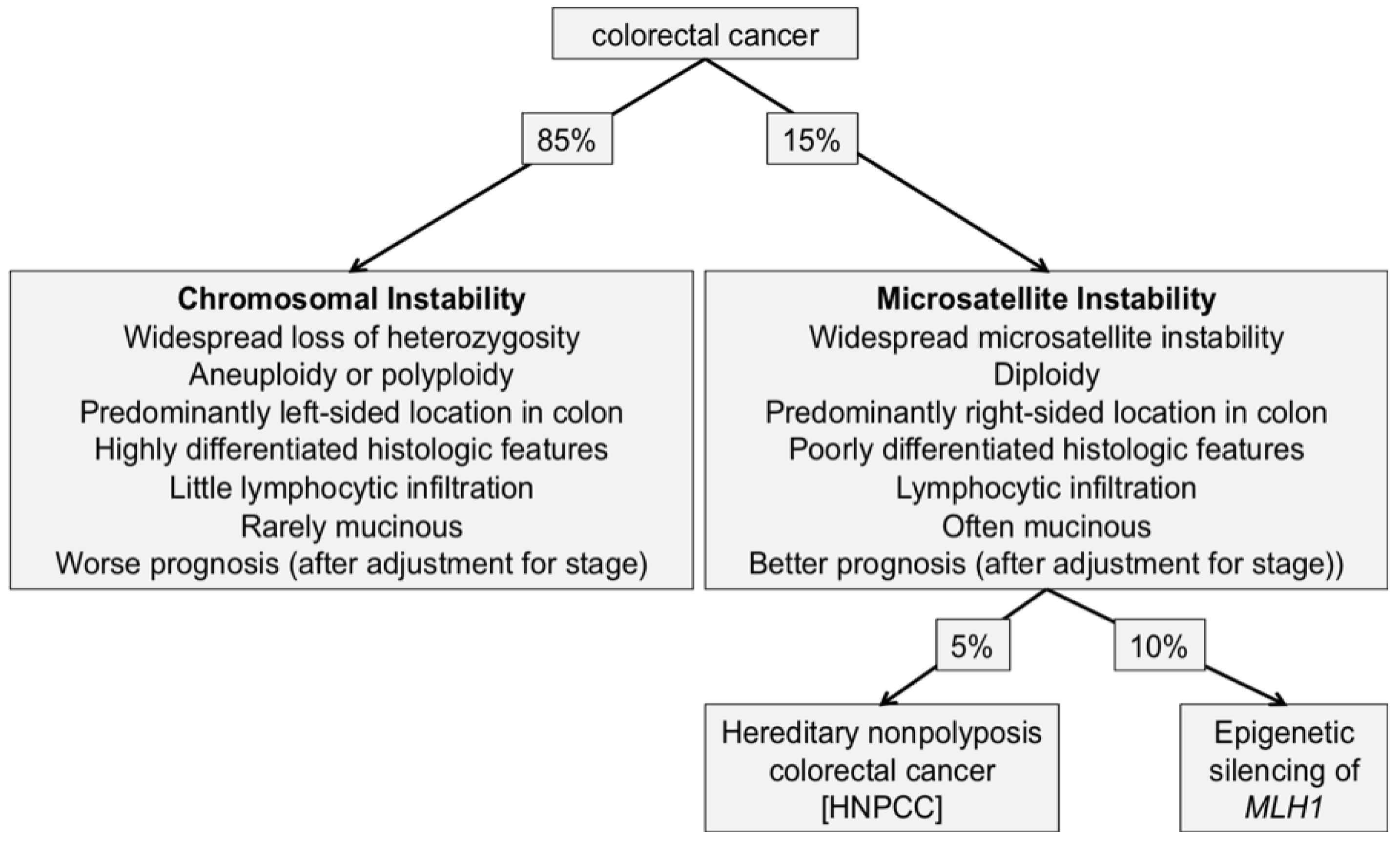 Cancers Free Full Text Review Of Histopathological And Molecular Prognostic Features In Colorectal Cancer Html