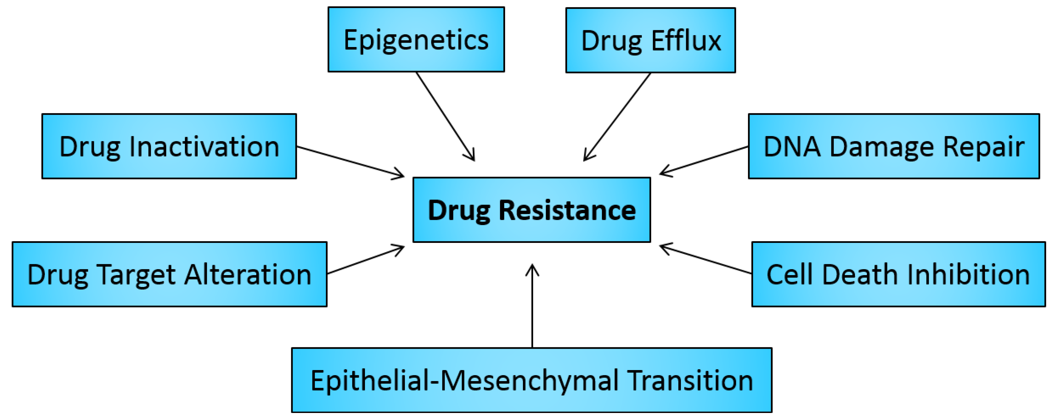 Overview of antibiotic resistance