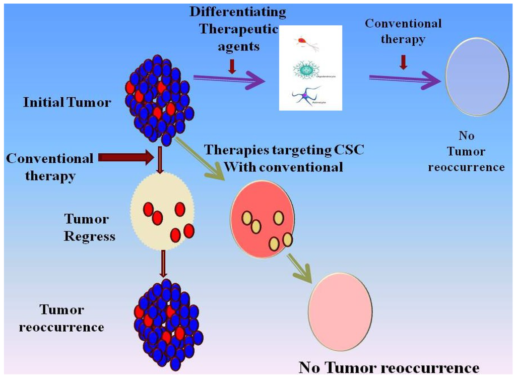 overcomig glioblastoma Glioblastoma is the most common and lethal primary malignant brain tumor in adults patients die from recurrent tumors that have become resistant to therapy new strategies are needed to design future therapies that target resistant cells.
