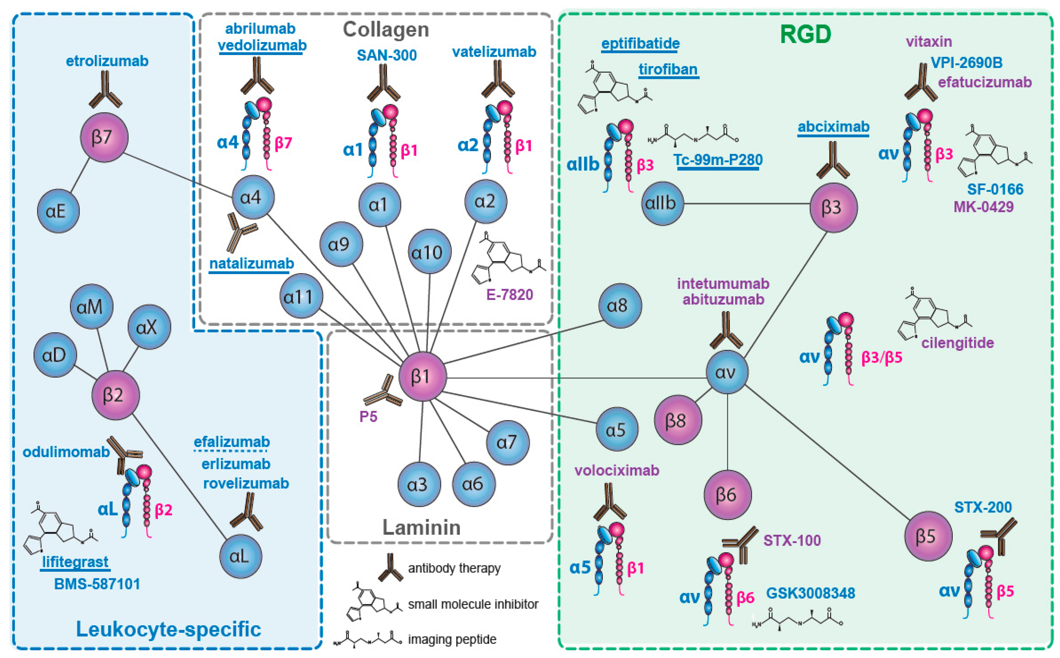 Cancers Free Full Text Integrins As Therapeutic Targets Meyer E 57h Wiring Diagram For Plow 09 00110 G001