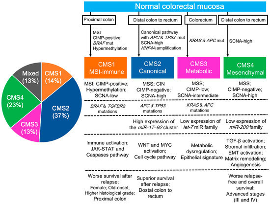 Cancers Free Full Text Colorectal Cancers An Update On Their Molecular Pathology Html