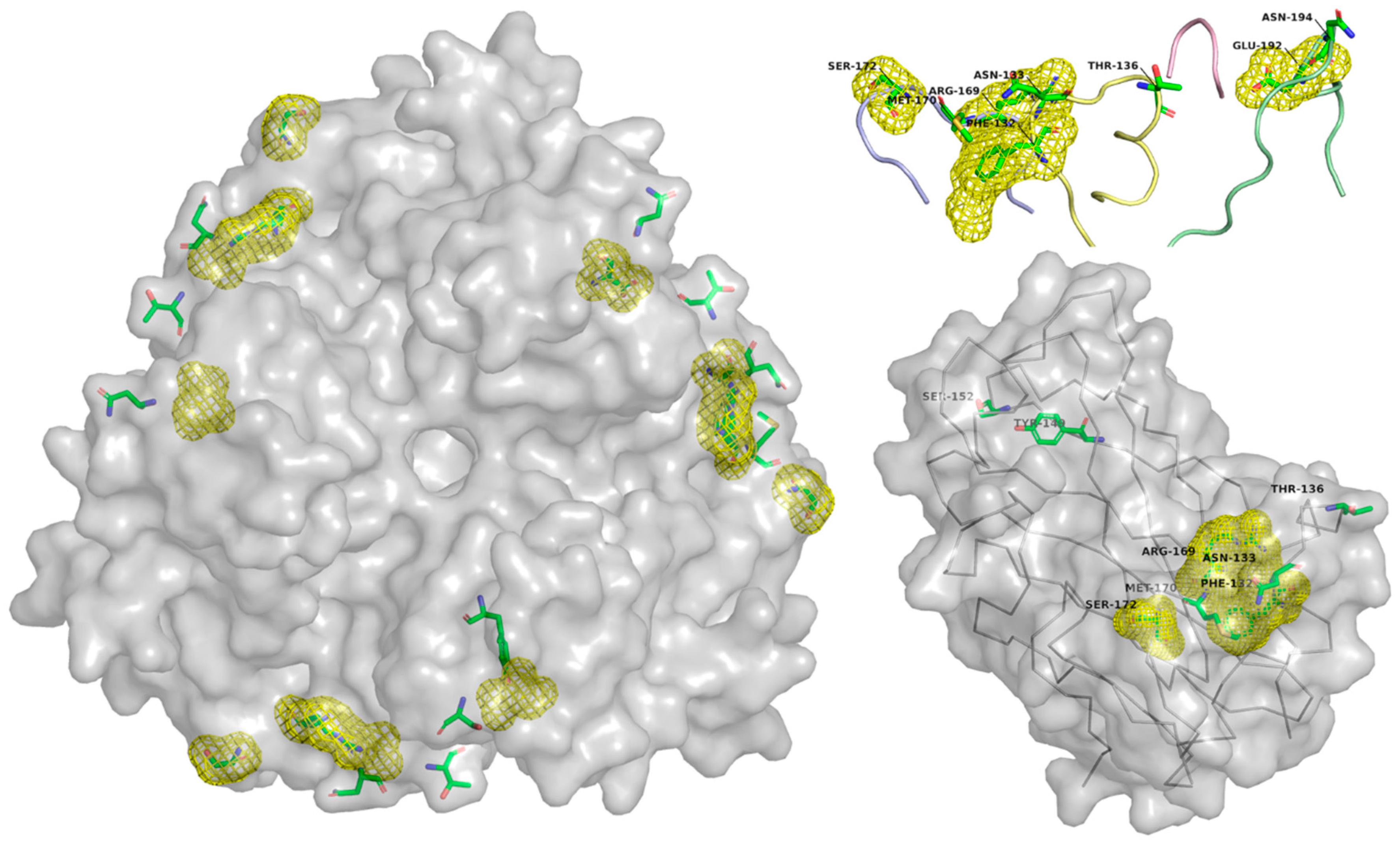 Cancers | Free Full-Text | Designer Oncolytic Adenovirus