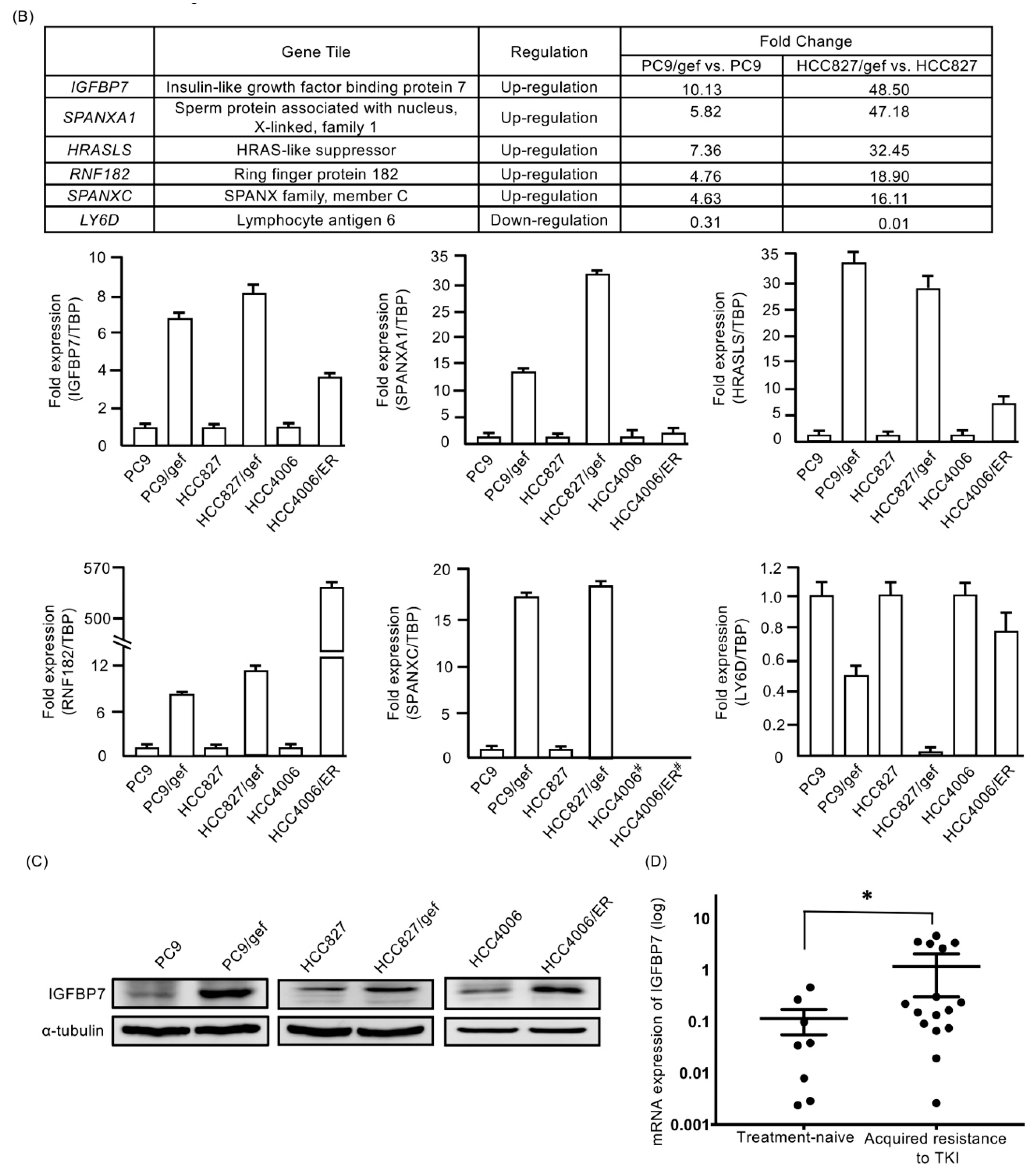 Cancers   Free Full-Text   IGFBP7 Drives Resistance to