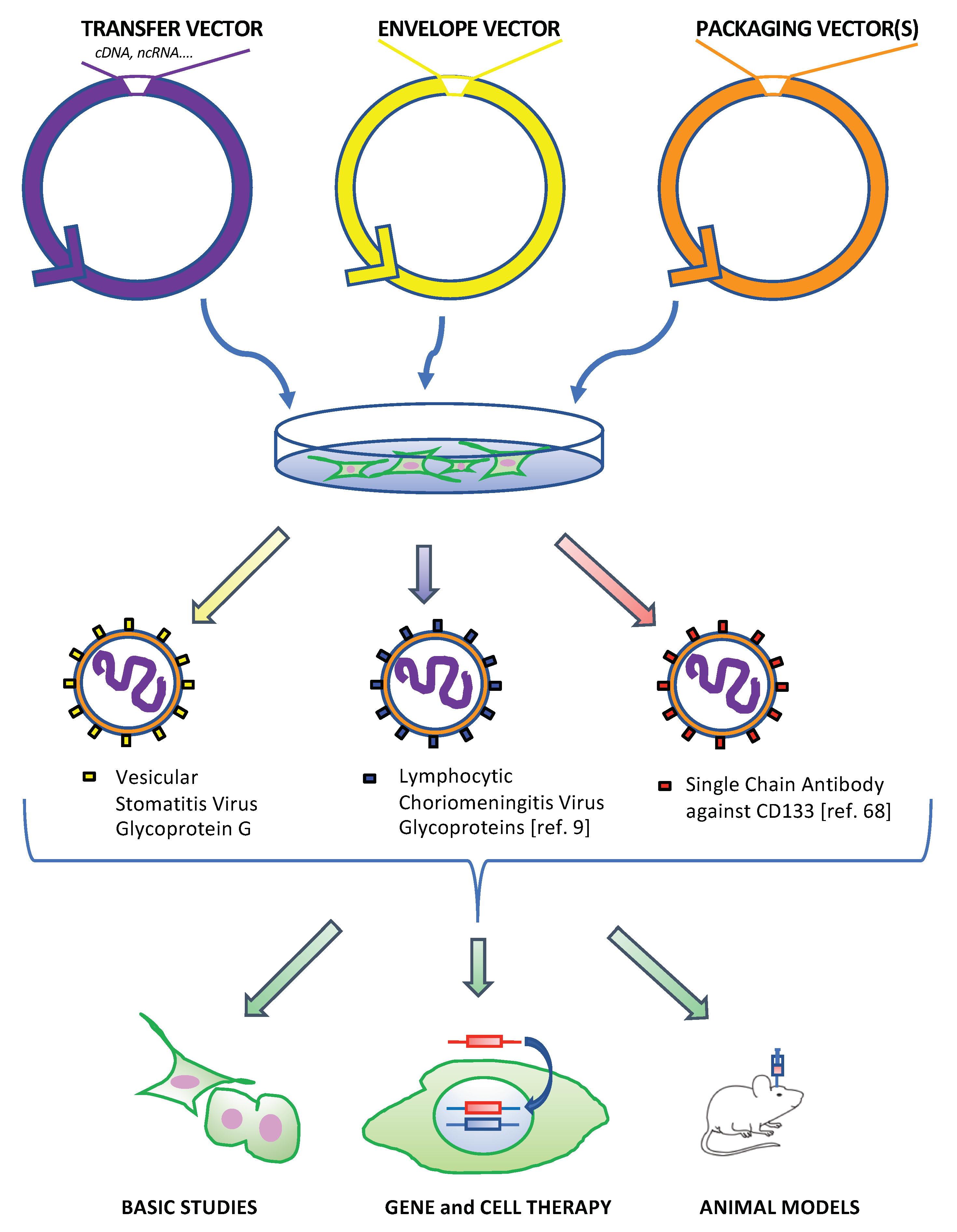Cancers | Free Full-Text | Lentiviral Vectors as Tools for the Study
