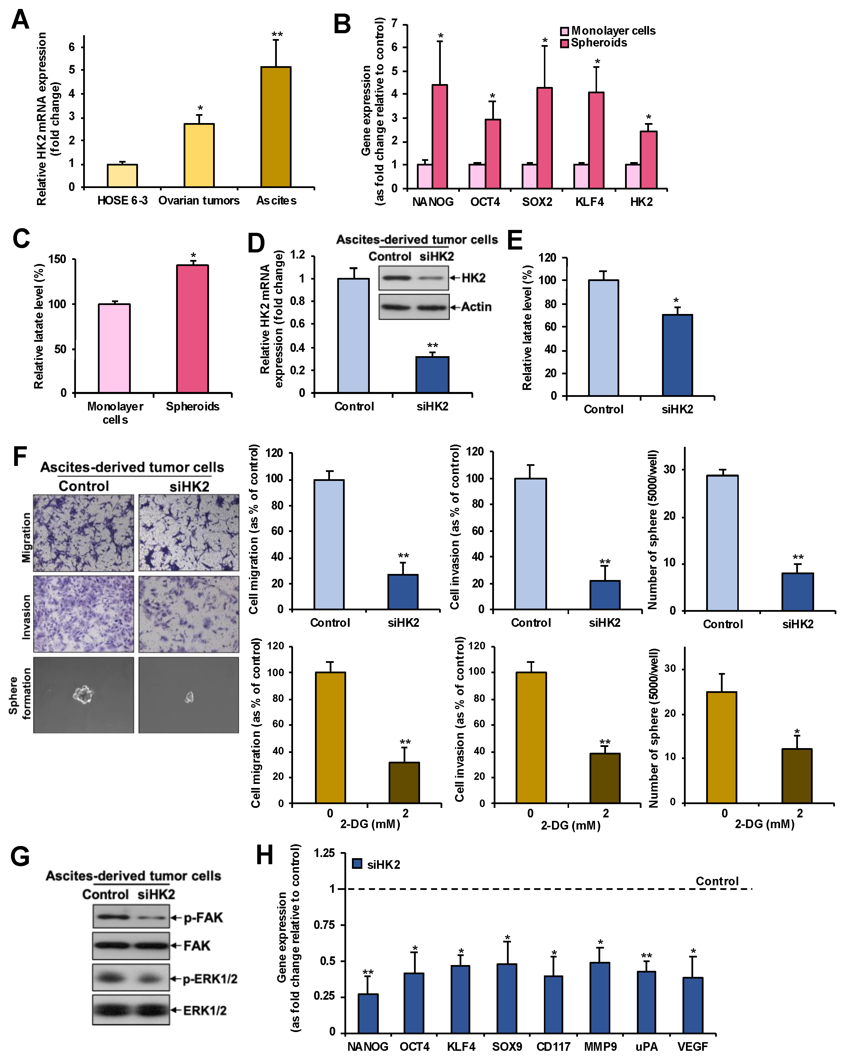 Cancers | Free Full-Text | Hexokinase 2 Regulates Ovarian Cancer