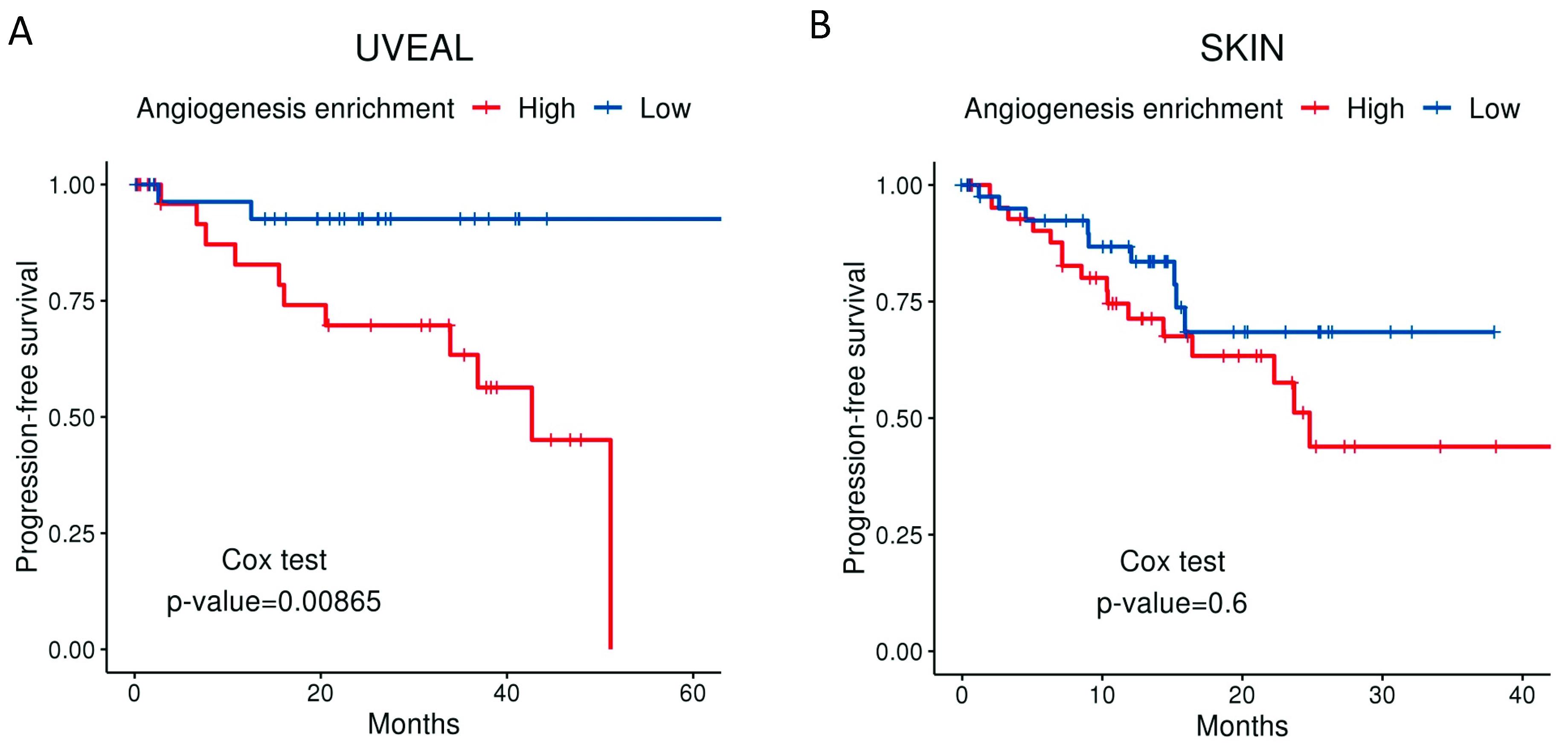 Cancers | Free Full-Text | Uveal Melanoma, Angiogenesis and