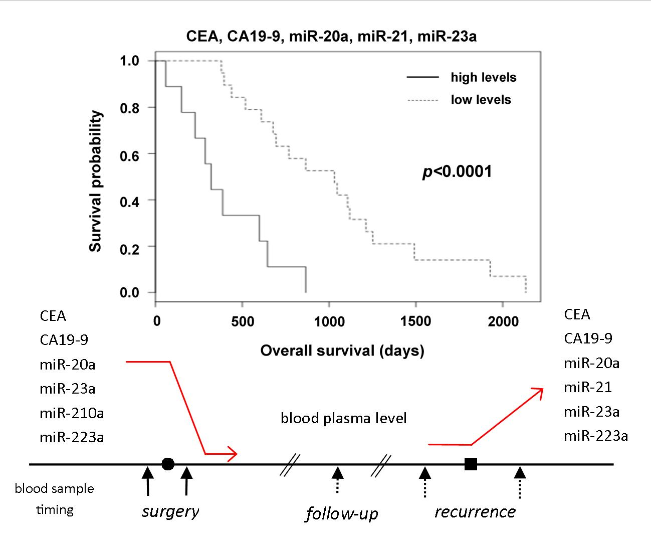 Cancers Free Full Text Plasma Microrna Levels Combined With Cea And Ca19 9 In The Follow Up Of Colorectal Cancer Patients