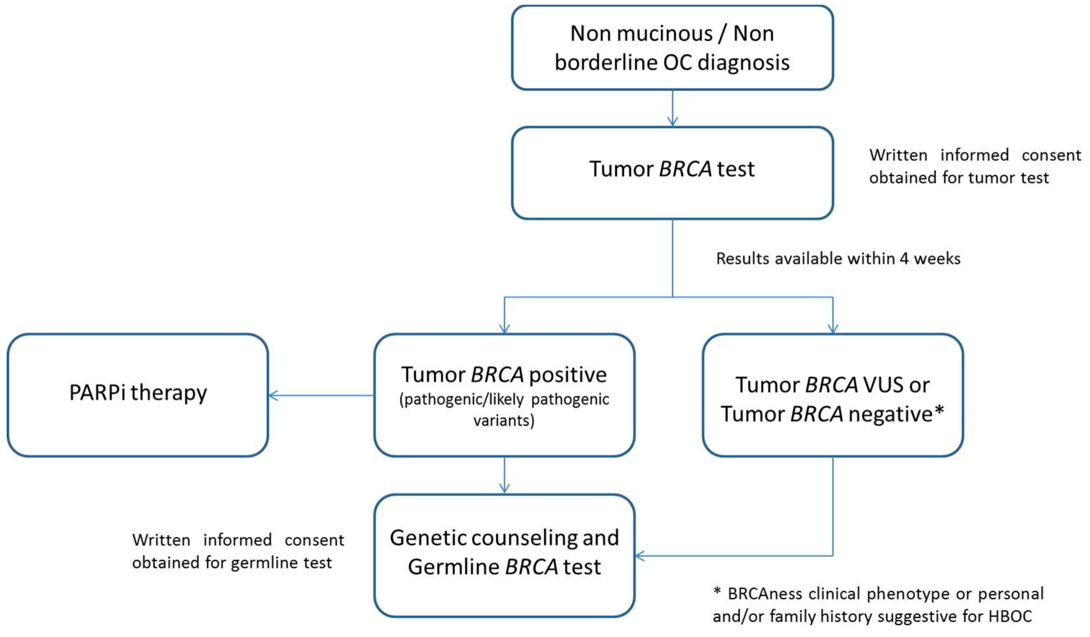 Cancers Free Full Text Tumor Brca Test For Patients With Epithelial Ovarian Cancer The Role Of Molecular Pathology In The Era Of Parp Inhibitor Therapy Html