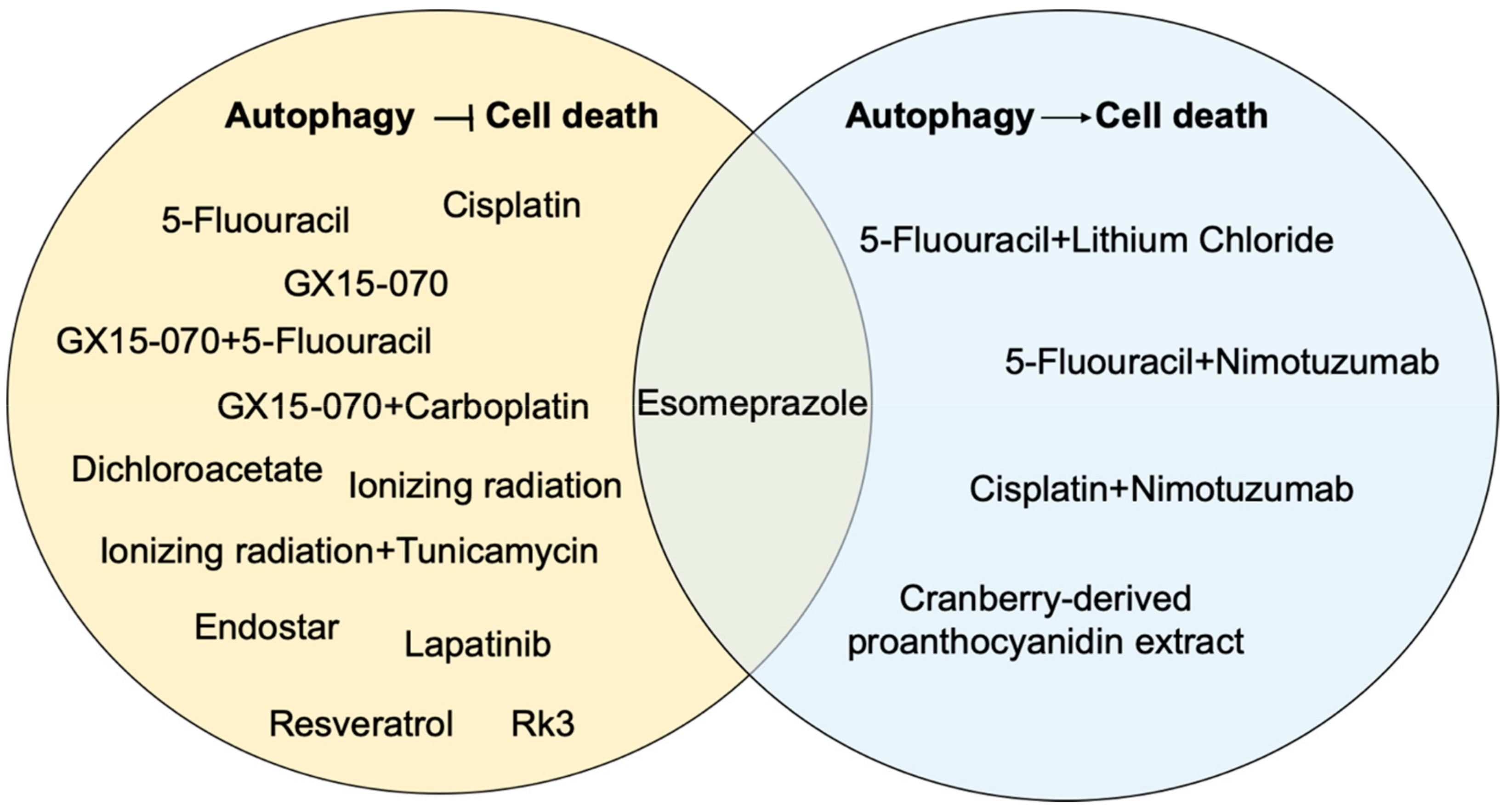 Cancers | Free Full-Text | Roles for Autophagy in Esophageal