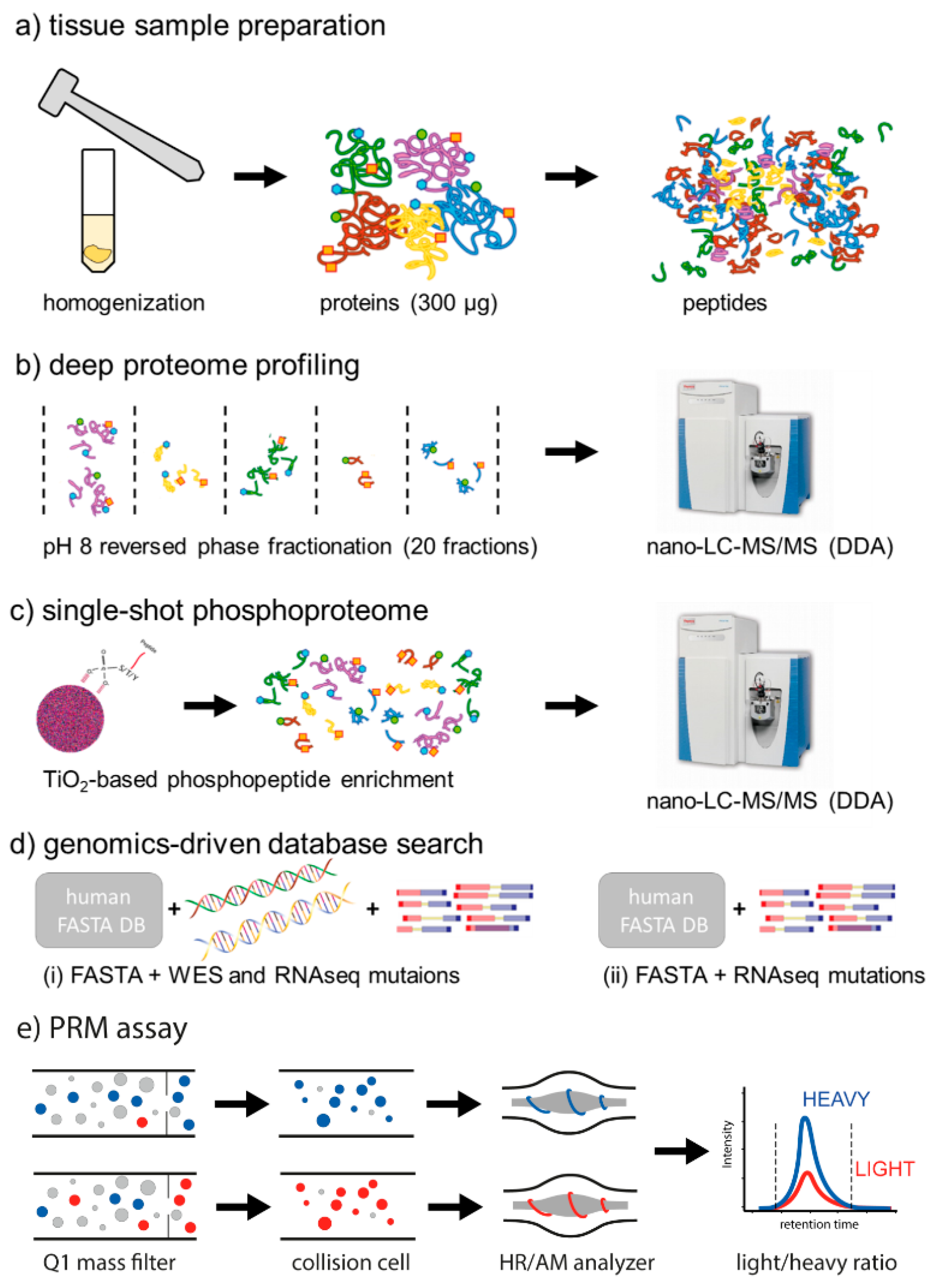 Cancers Free Full Text Proteogenomics Of Colorectal Cancer Liver Metastases Complementing Precision Oncology With Phenotypic Data