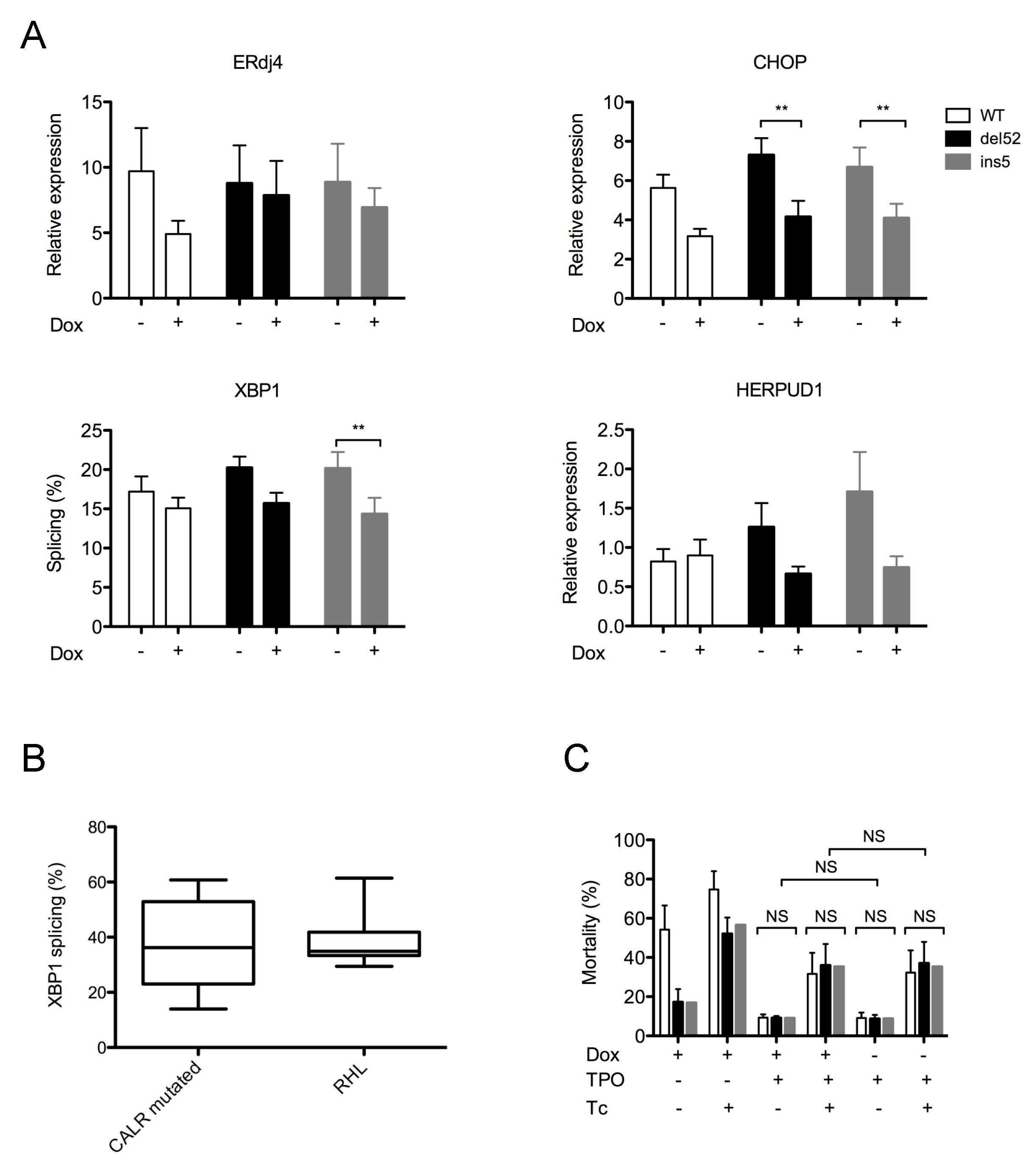 Cancers Free Full Text The Expression Of Myeloproliferative