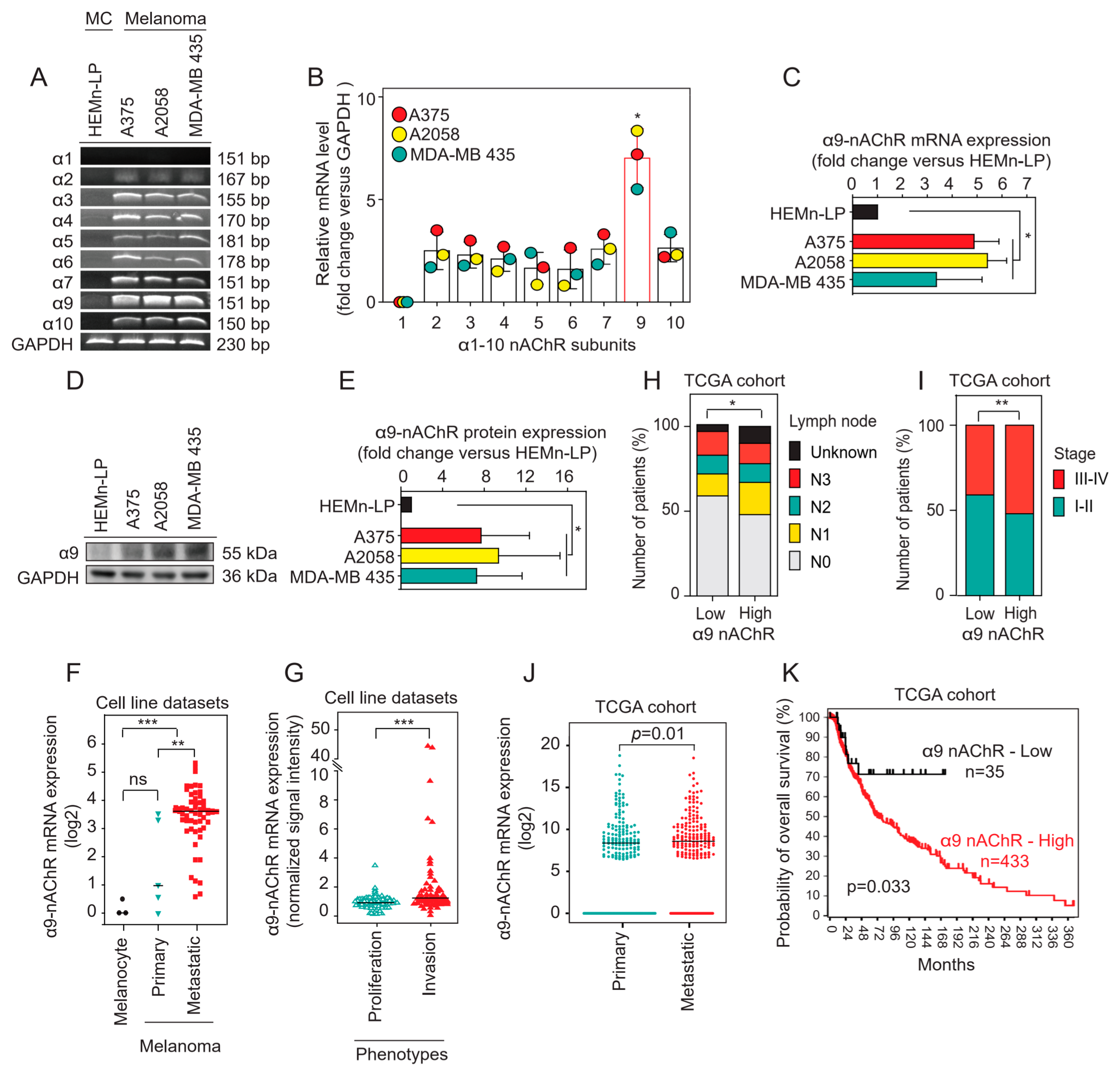 Cancers Free Full Text The A9 Nicotinic Acetylcholine Receptor Mediates Nicotine Induced Pd L1 Expression And Regulates Melanoma Cell Proliferation And Migration Html We found that twist.moe is poorly 'socialized' in. nicotinic acetylcholine receptor