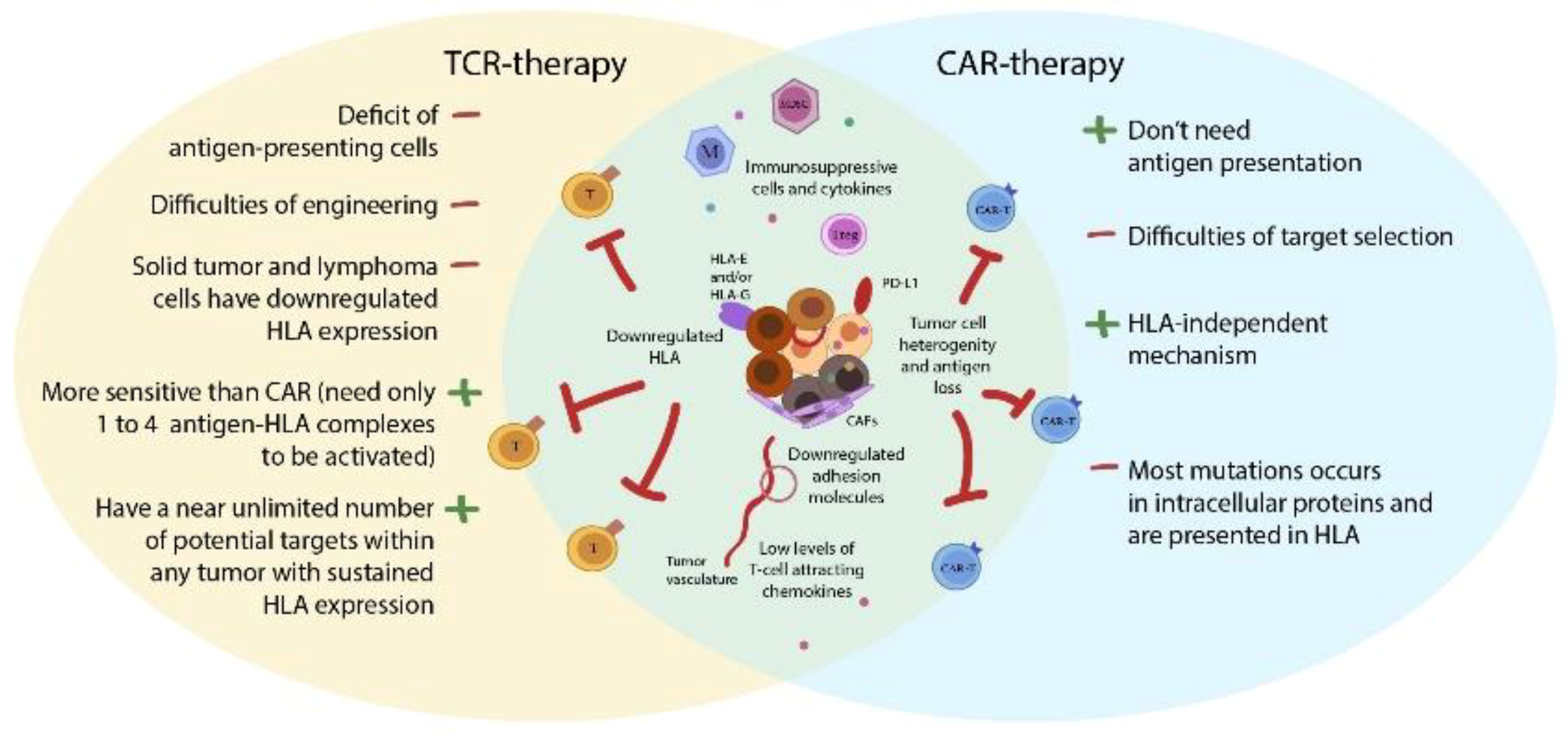 Cancers Free Full Text Advancing Car T Cell Therapy For Solid Tumors Lessons Learned From Lymphoma Treatment