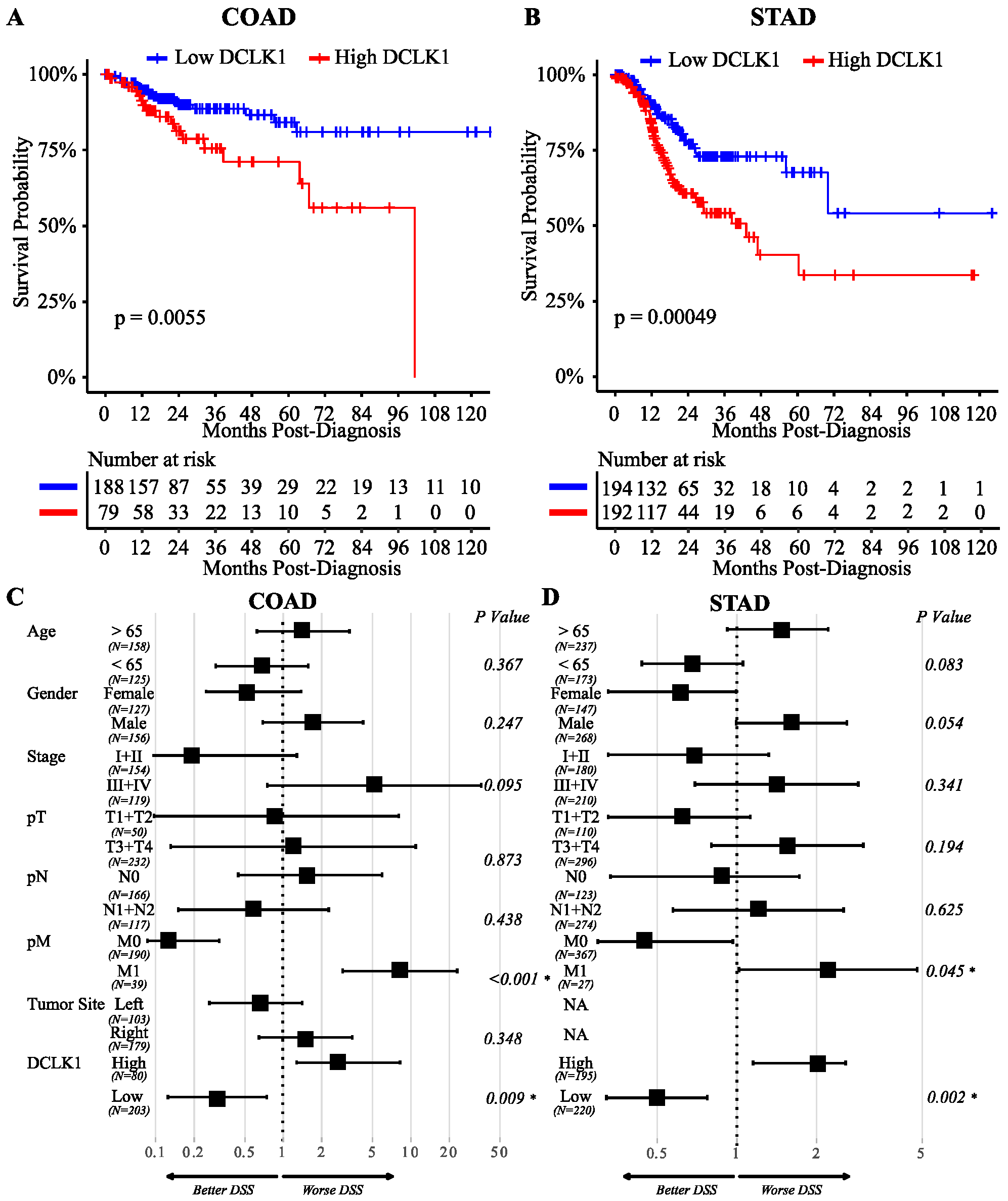 Cancers Free Full Text Cancer Stem Cell Marker Dclk1 Correlates With Tumorigenic Immune Infiltrates In The Colon And Gastric Adenocarcinoma Microenvironments