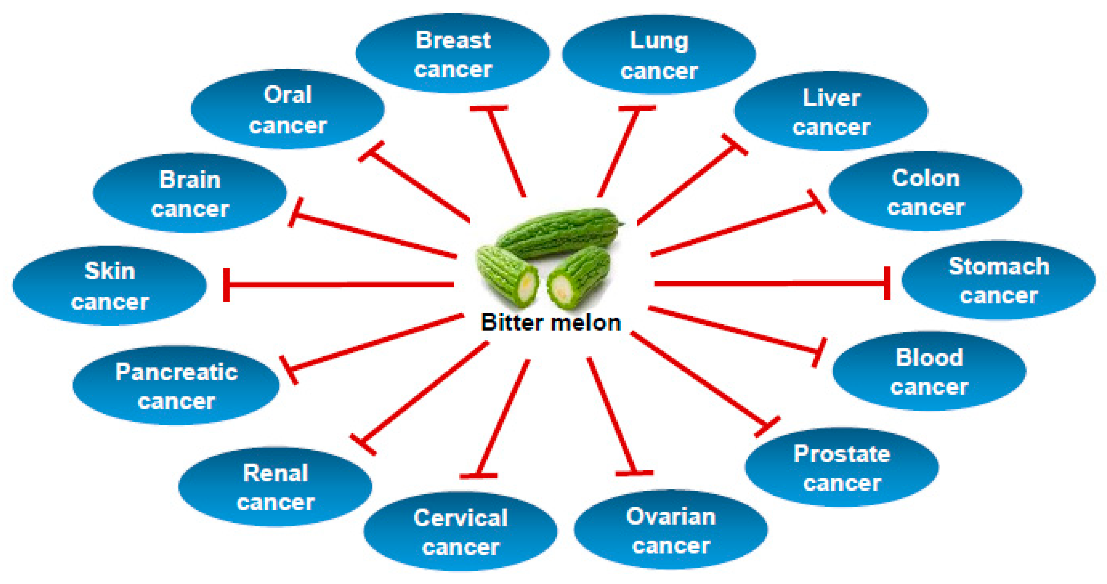 Cancers Free Full Text Bitter Melon Momordica Charantia A Nutraceutical Approach For Cancer Prevention And Therapy Html