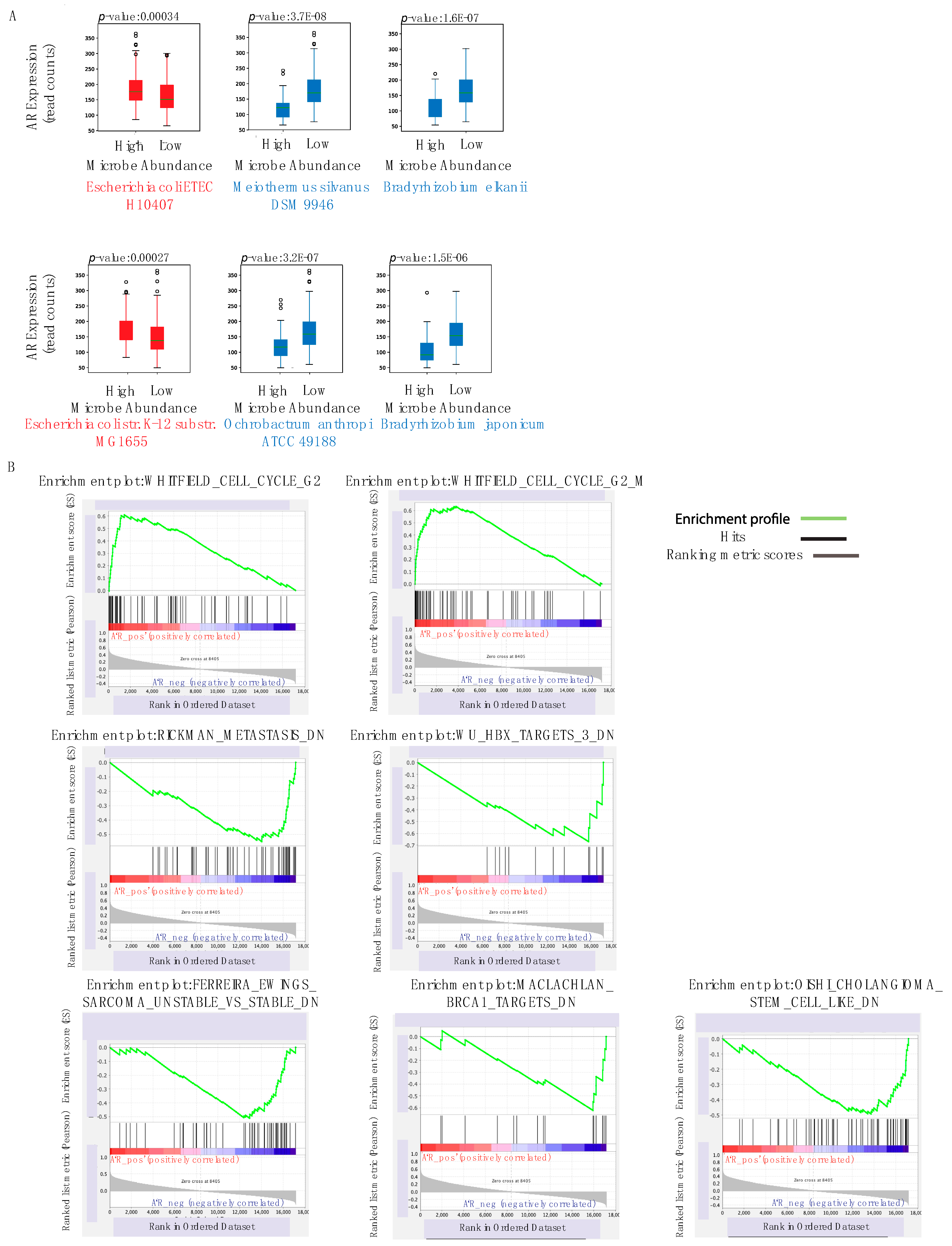 Cancers Free Full Text Influence Of Intratumor Microbiome On Clinical Outcome And Immune Processes In Prostate Cancer Html