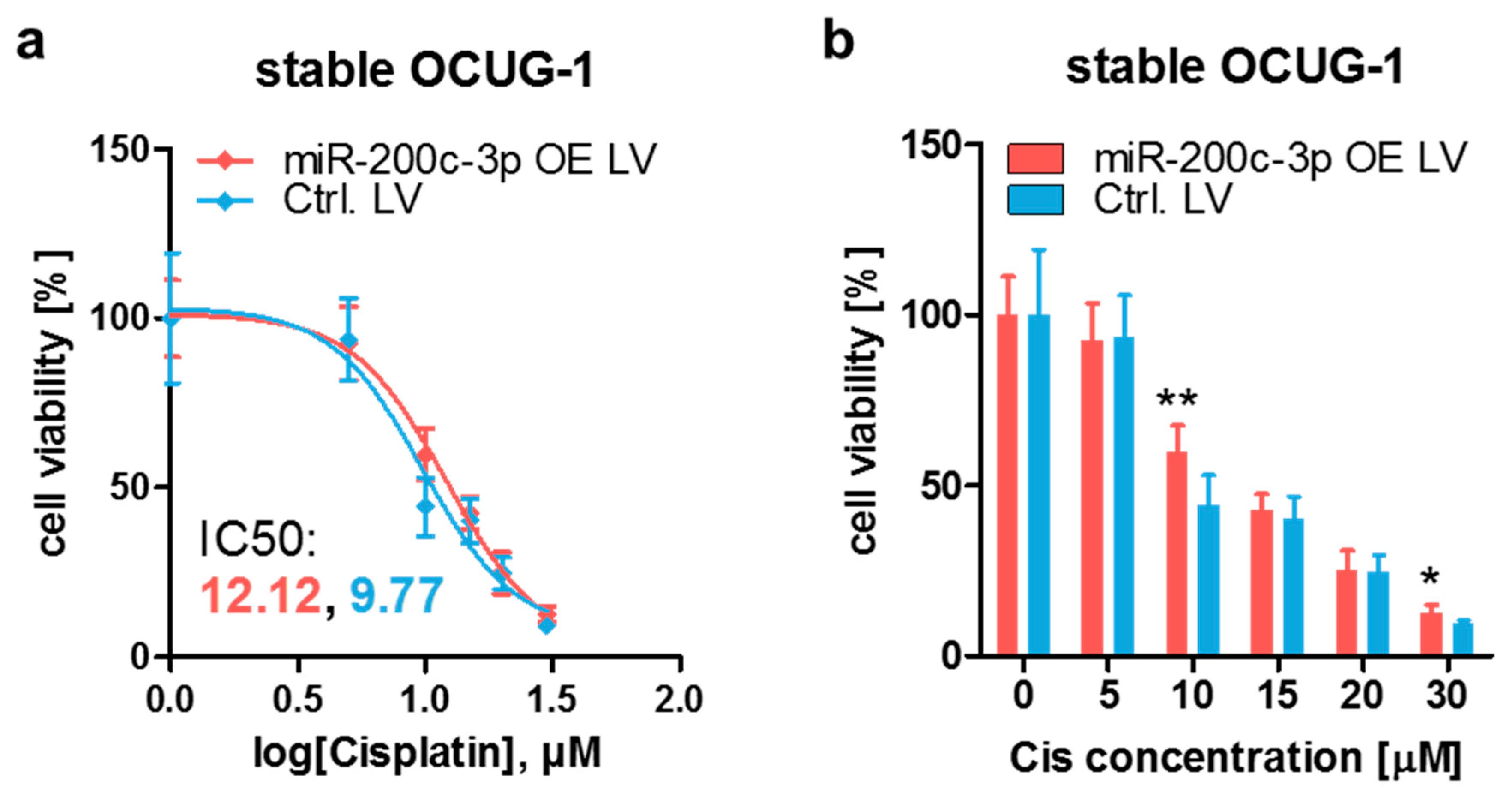 Cancers   Free Full Text   MiR 20c 20p Modulates Cisplatin ...