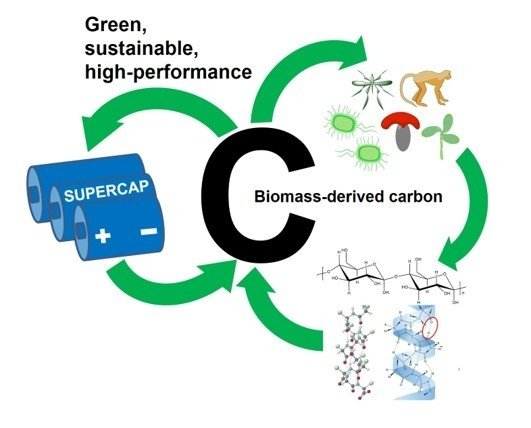 C | Free Full-Text | Design and Preparation of Biomass