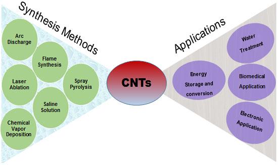 Carbon Nanotubes: Methods and Protocols