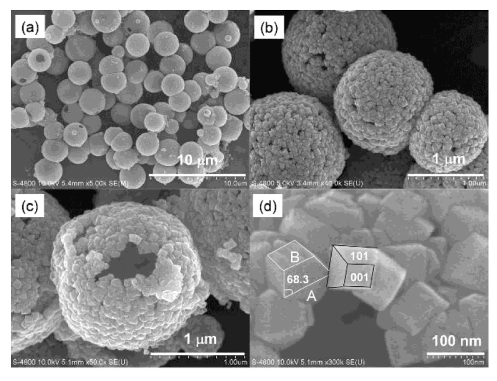Catalysts 03 00455 g009 1024