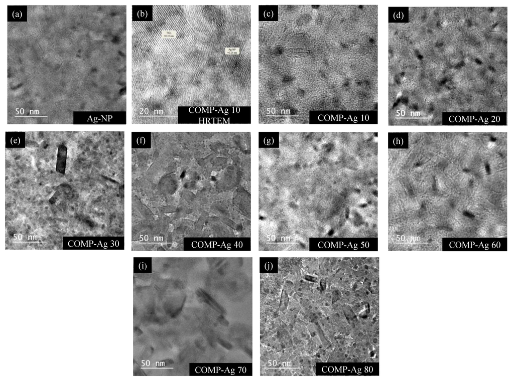 Catalysts 03 00625 g003 1024