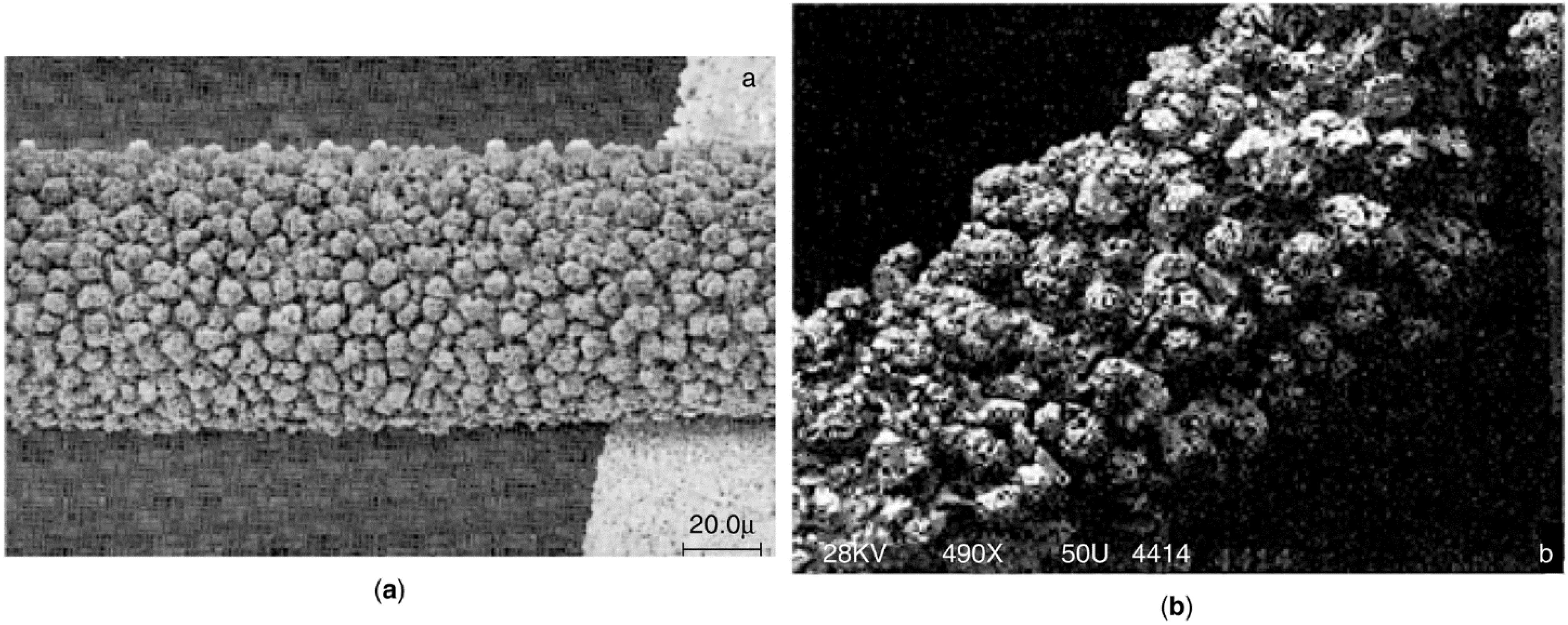 f79f73ac7fd Catalysts 05 00145 g021