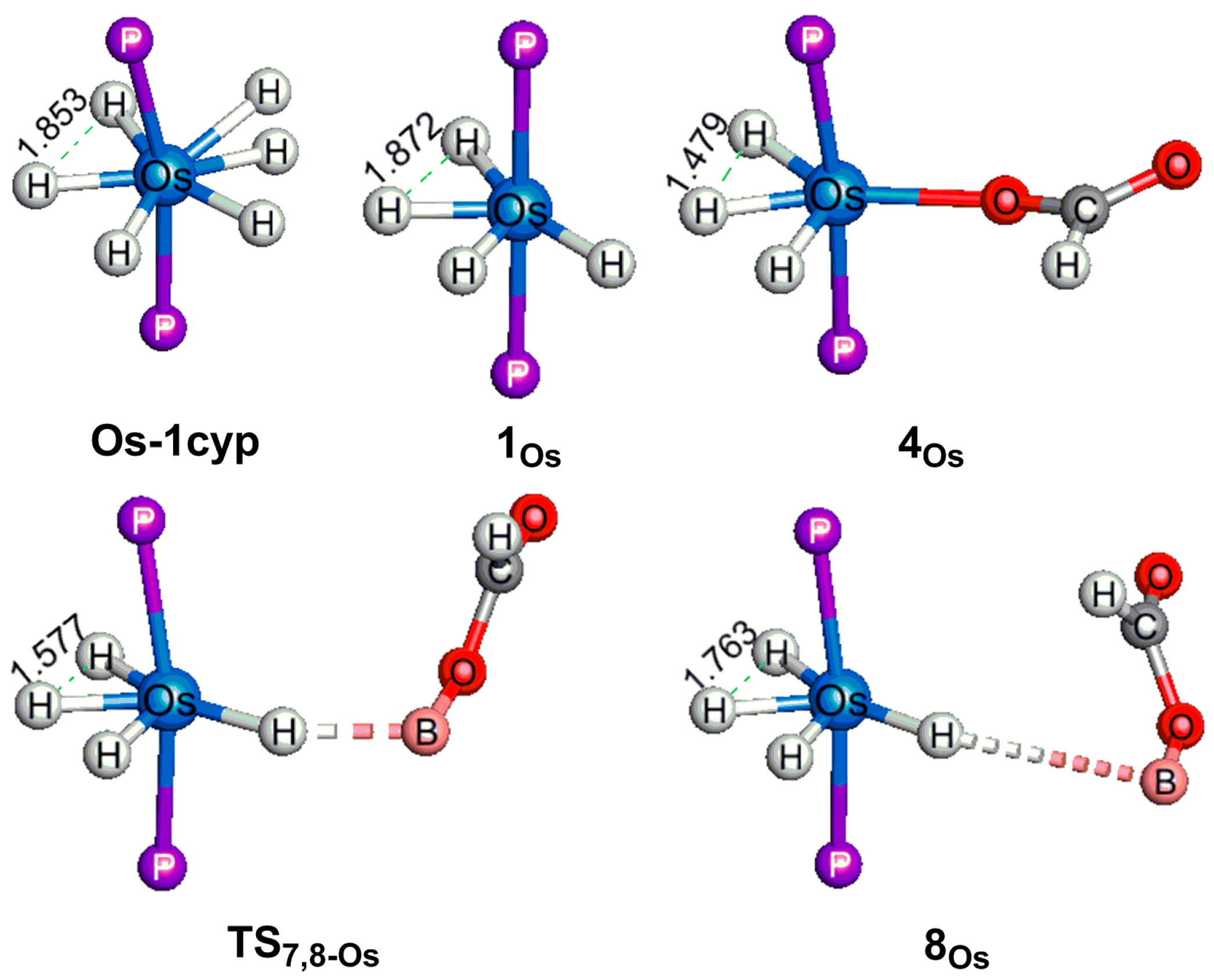 sigma bond metathesis reaction Smith et al report the iridium-catalyzed reaction using σ-bond metathesis type cp 2 scsihrr' sigma-bond metathesis reactions and catalytic.