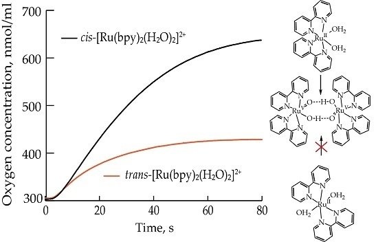Mechanistic Analysis of Water Oxidation Catalyst cis-Rubpy2H2O22 : Effect of Dimerization