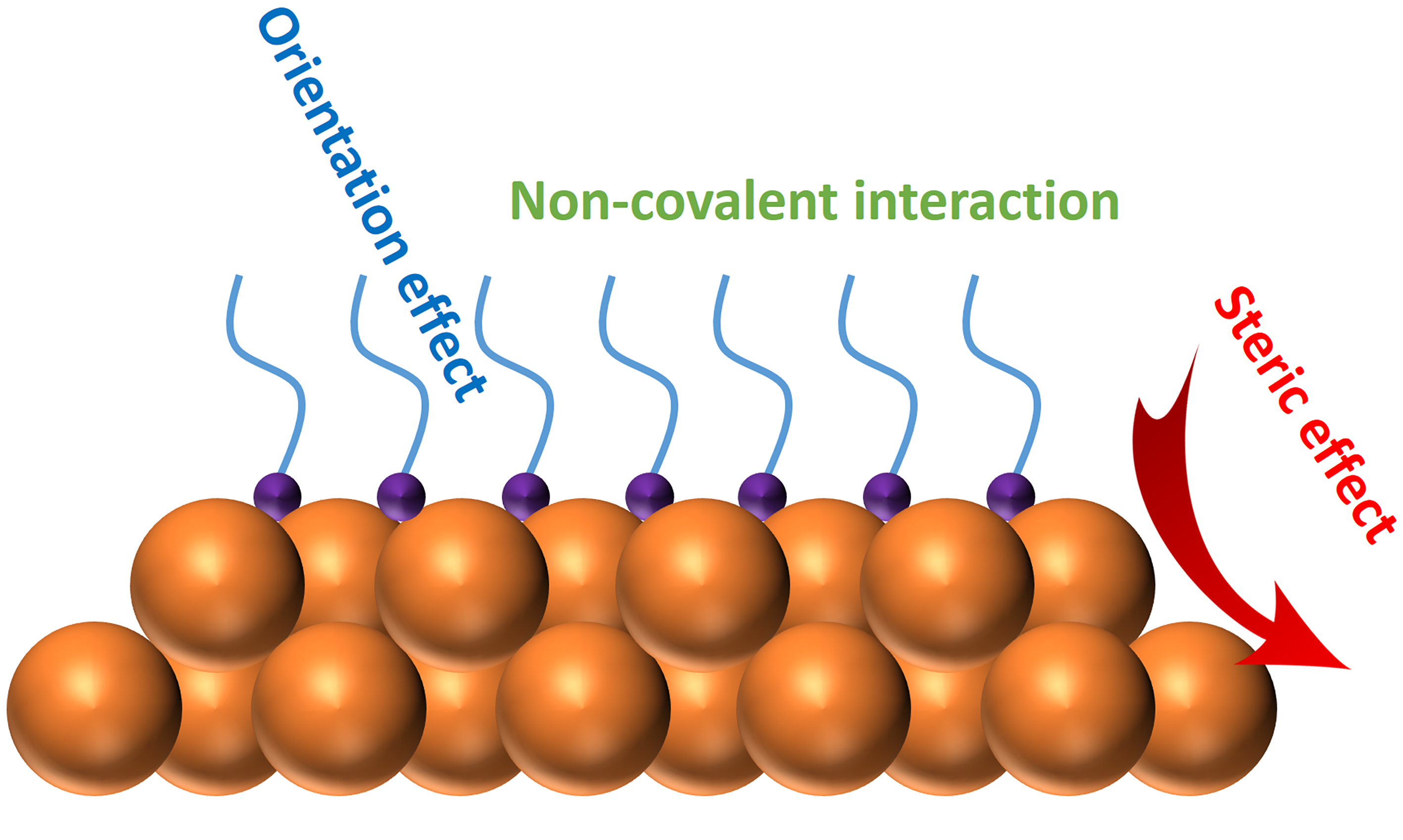 Engineering surface ligands of noble metal nanocatalysts in tuning the product selectivity