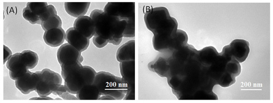 Immobilization of Thermostable Lipase QLM on Core-Shell Structured Polydopamine-Coated Fe3O4 Nanoparticles