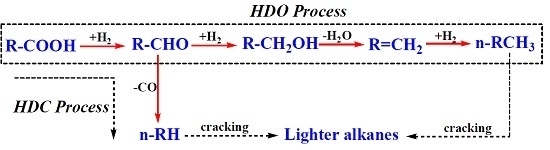 Synthesis of Renewable Diesel Range Alkanes by Hydrodeoxygenation of Palmitic Acid over 5% Ni-CNTs under Mild Conditions