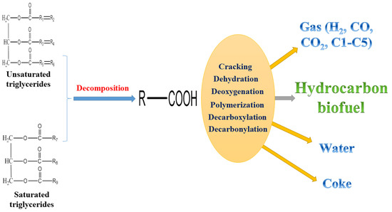 Review of Heterogeneous Catalysts for Catalytically Upgrading Vegetable Oils into Hydrocarbon Biofuels