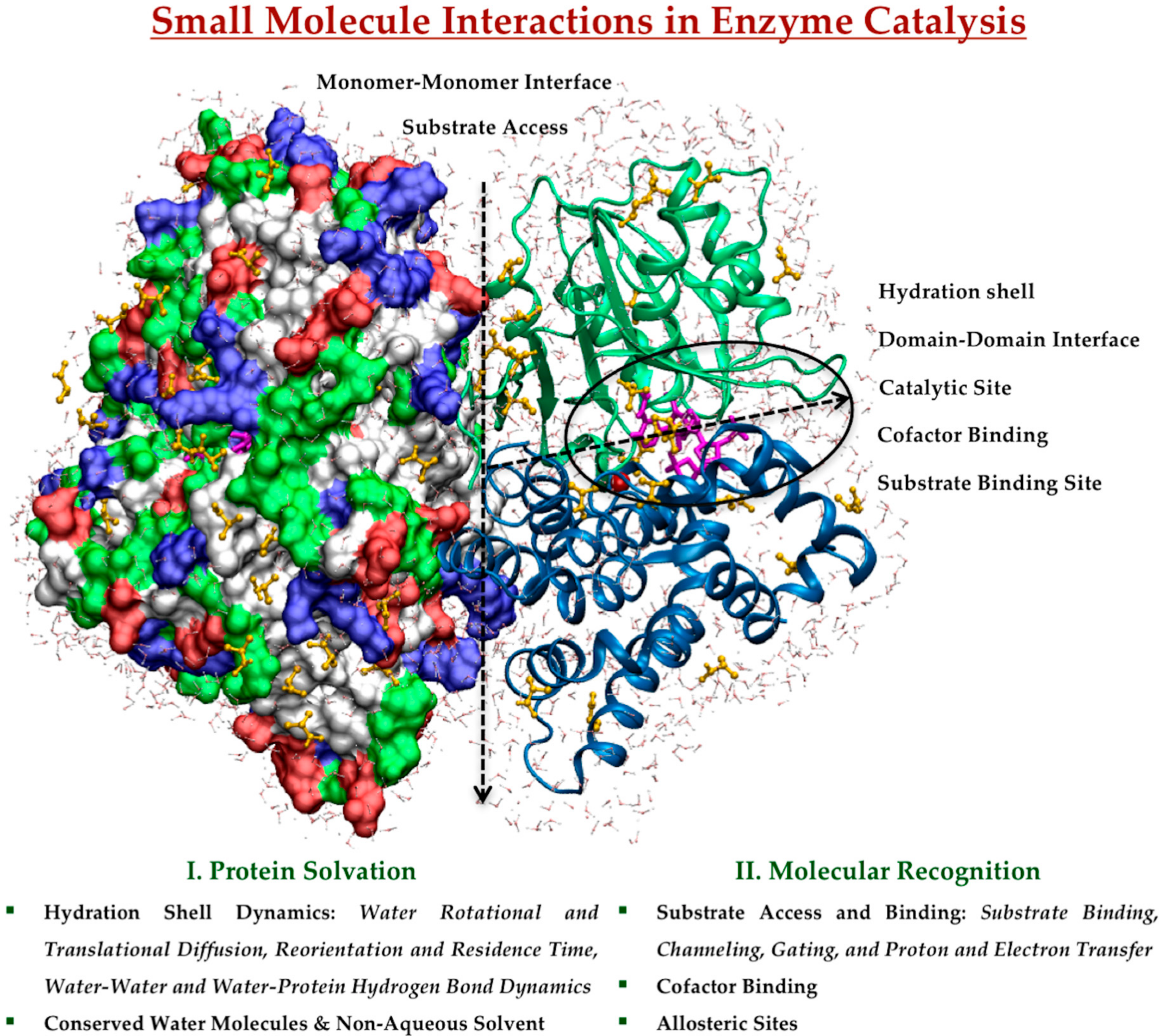 Catalysts   Free Full-Text   In Silico Studies of Small