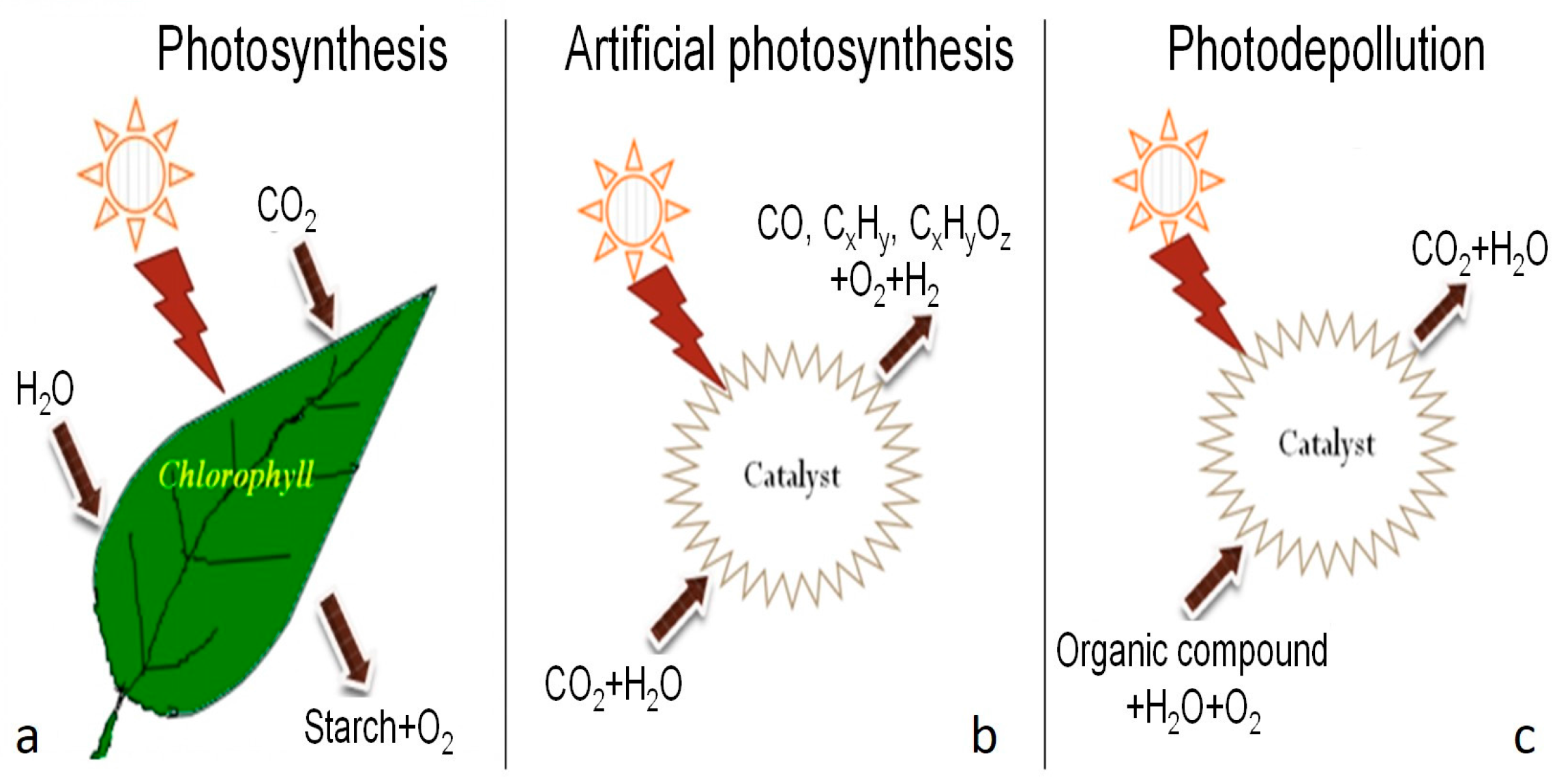 artificial photsynthesis What is photosynthesis artificial photosynthesis discovery of photosynthesis home photosynthesis for kids photosynthesis for kids what is photosynthesis.
