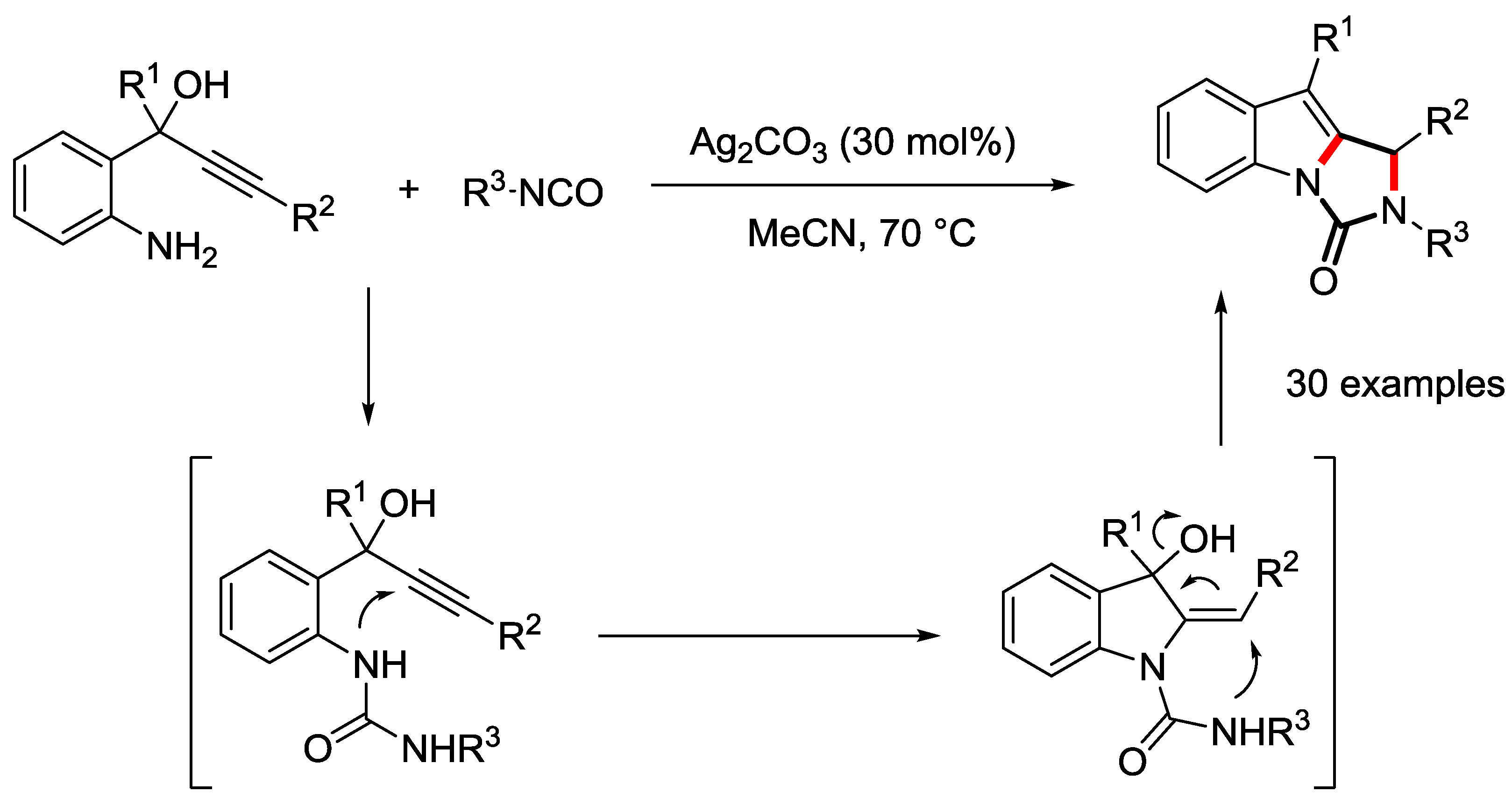 a state of dynamic equilibrium ag2co3