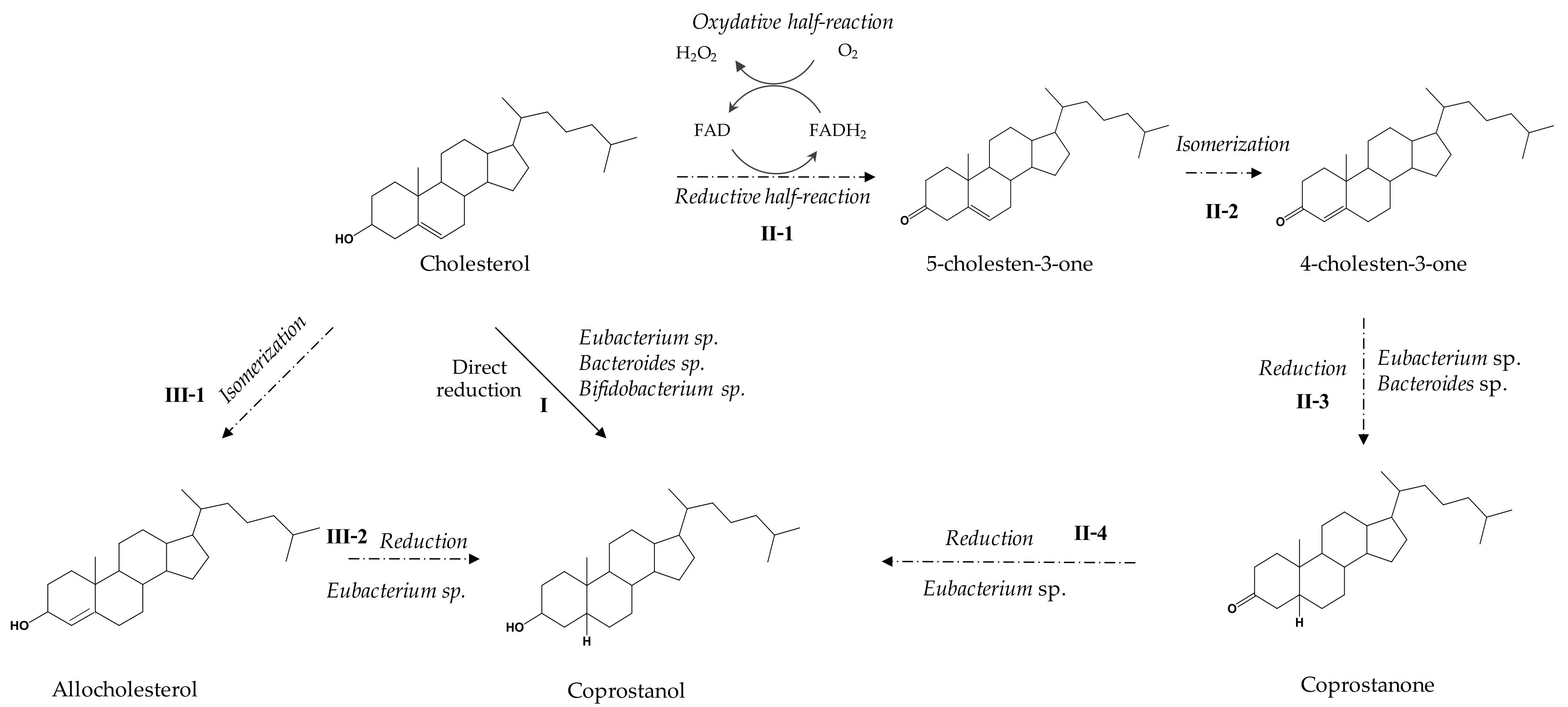 catalysts 09 00167 g002  figure 2